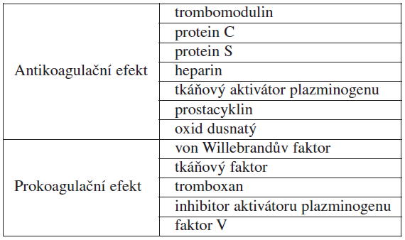 Produkty endotelových buněk