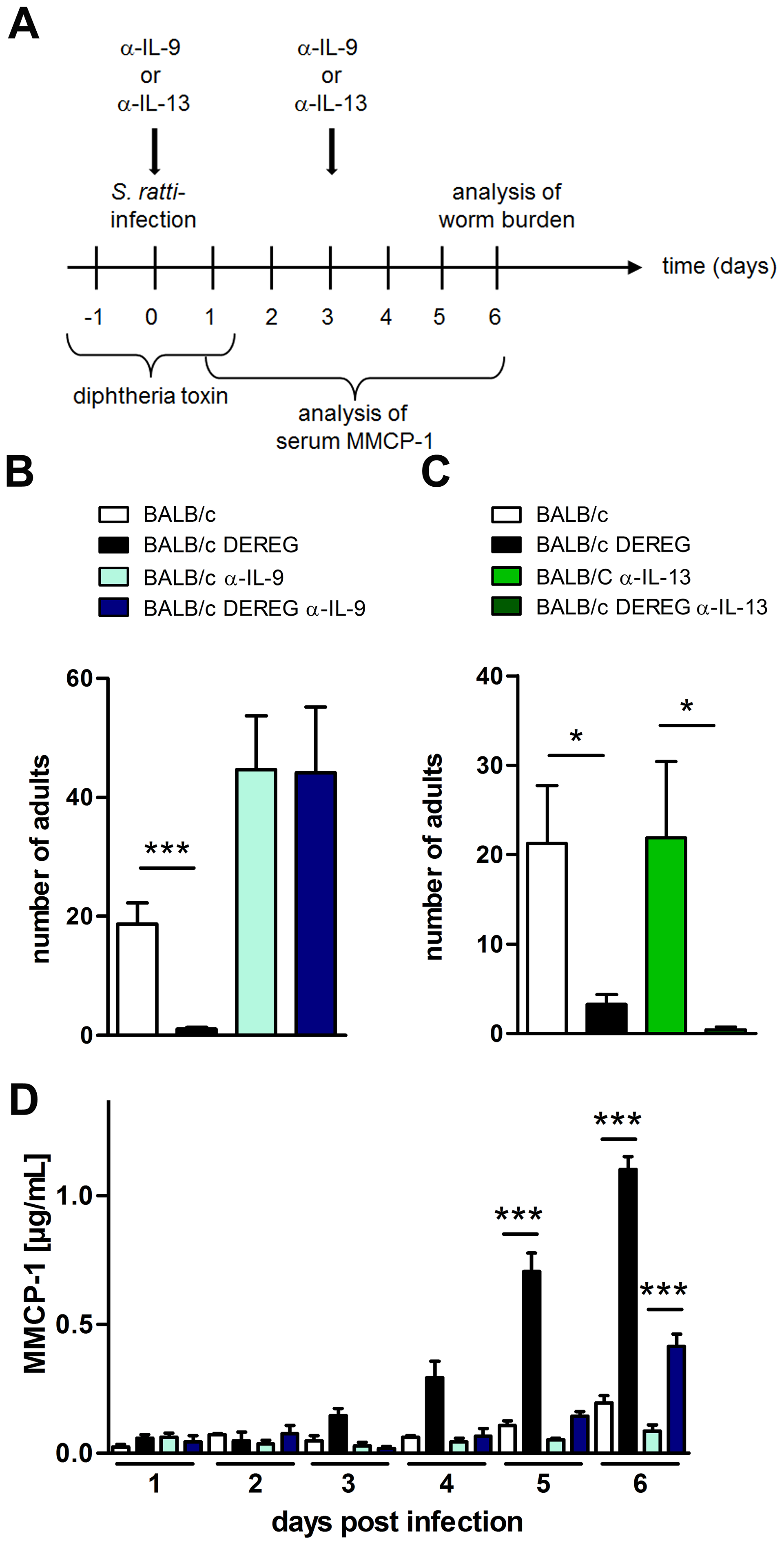 Role of IL-9 during <i>S. ratti</i> infection in Treg-depleted BALB/c mice.