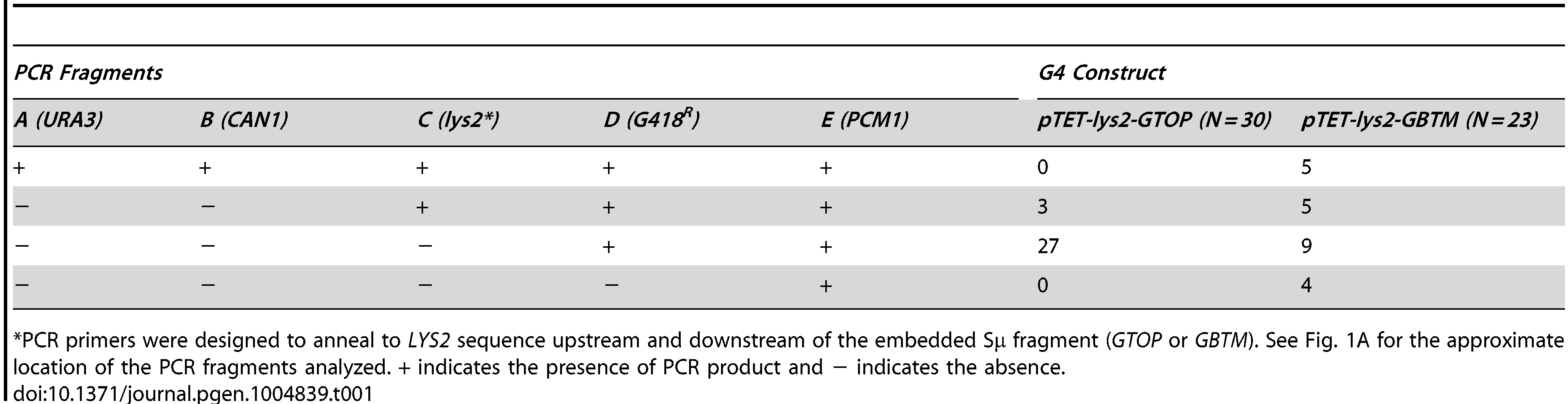 PCR analysis to map GCR breakpoints.