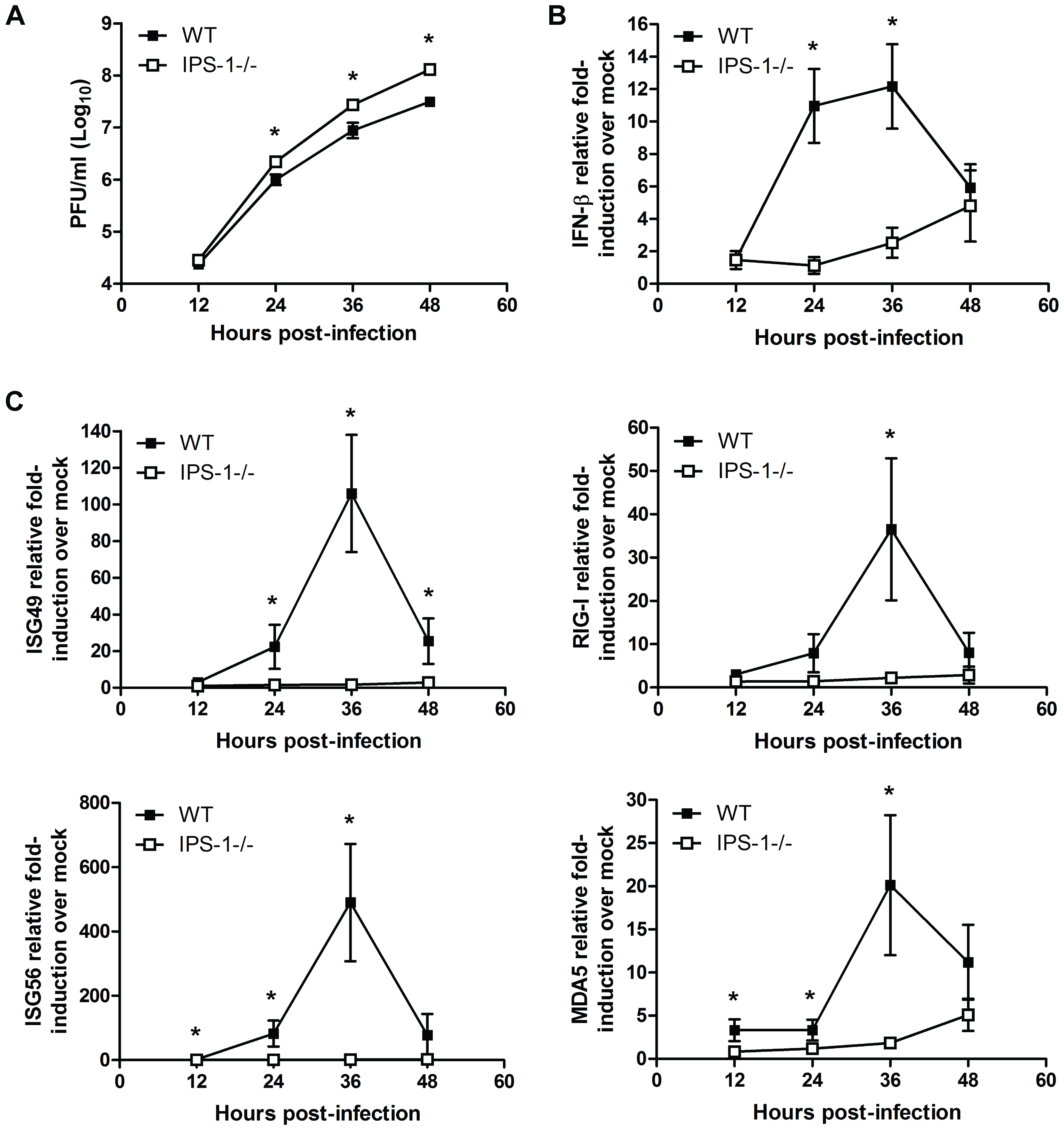 IPS-1 is essential for triggering innate immune defenses and controlling virus replication during WNV infection of primary cortical neurons.