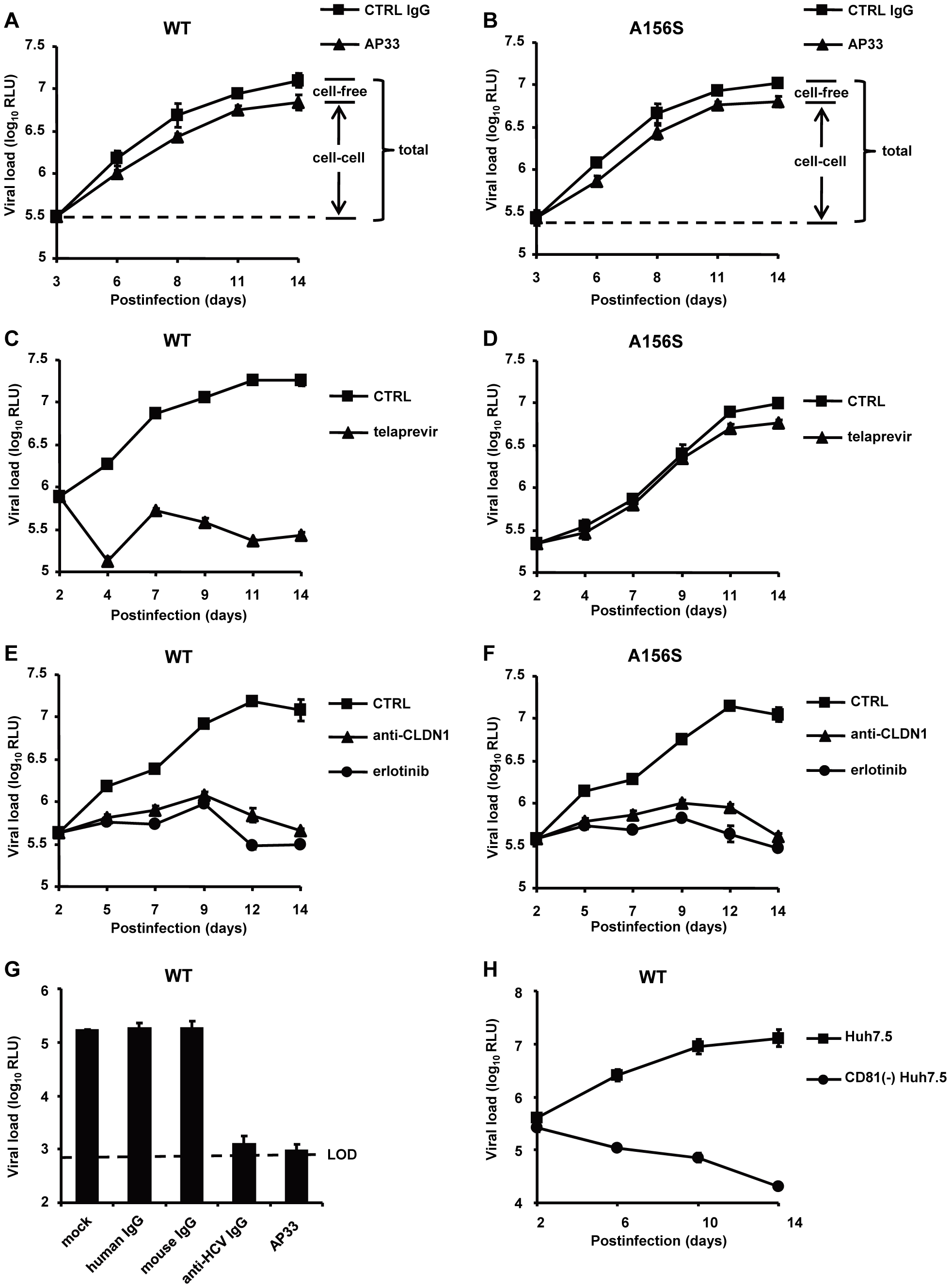 The spread of DAA-resistant viruses is resistant to neutralizing antibodies against HCV but is efficiently inhibited by HTEIs.