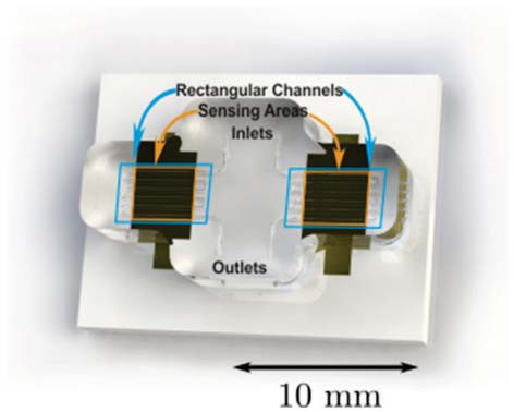 Fig. 4: Photograph of two guiding meander channels placed above a surface acoustic wave sensor chip. The orange frame shows the sensitive surface and the blue frame indicates the area covered by the microfluidic channel.
