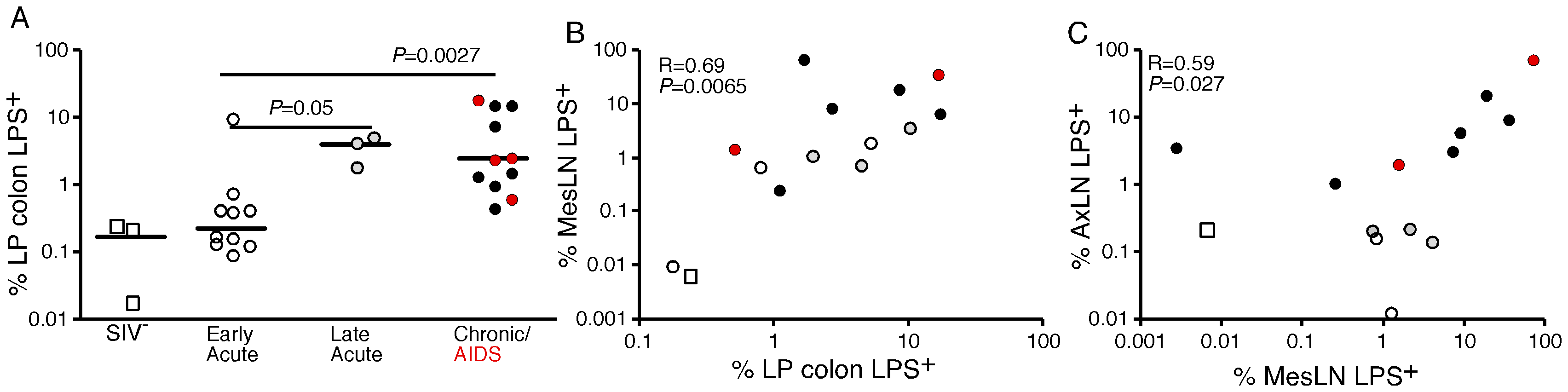 Quantitative image analysis of microbial translocation.