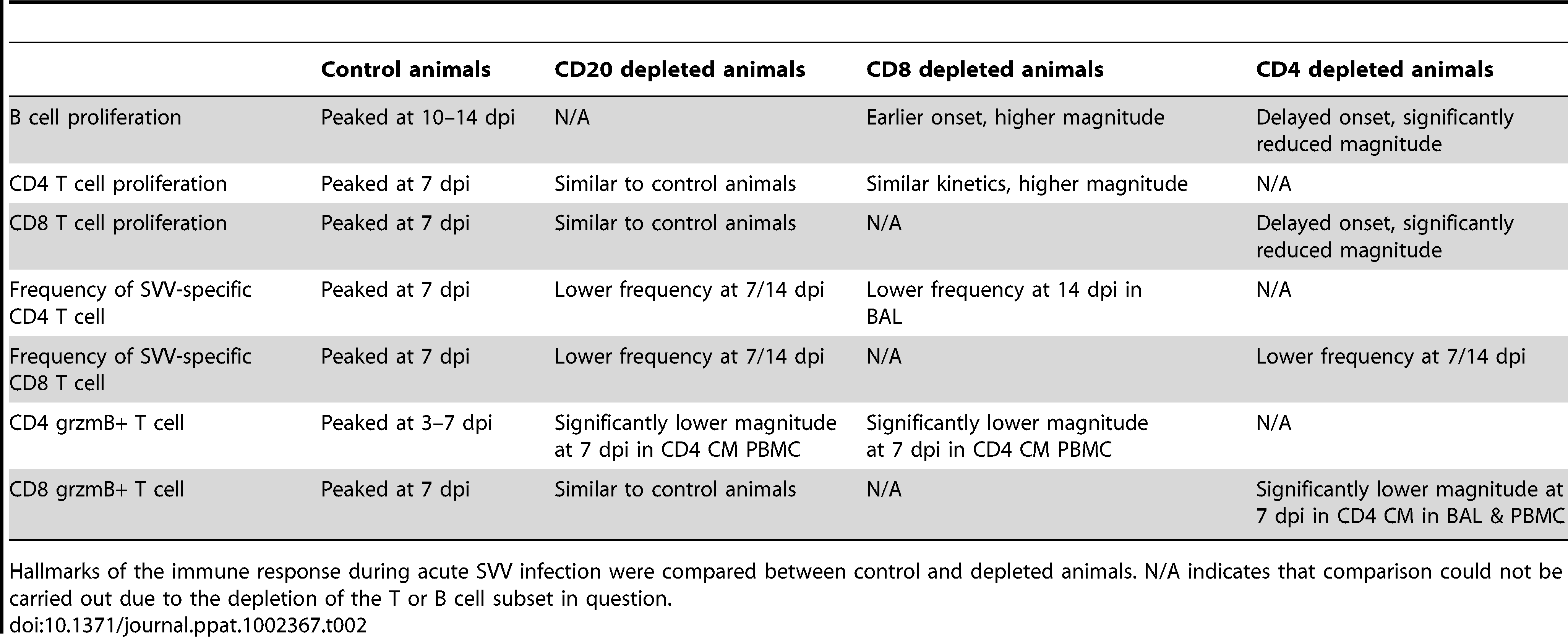 Summary of effect of immune cell depletions on the anti-SVV response.