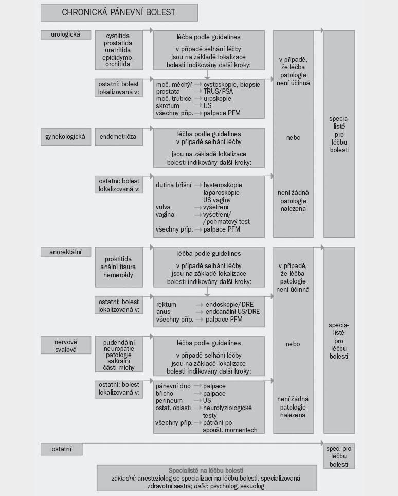 Schéma 1. Algoritmus pro diagnostiku a léčbu chronické pánevní bolesti (CPP). Pro další vysvětlení je čtenář odkázán ke kompletnímu textu CPP Guidelines [1].