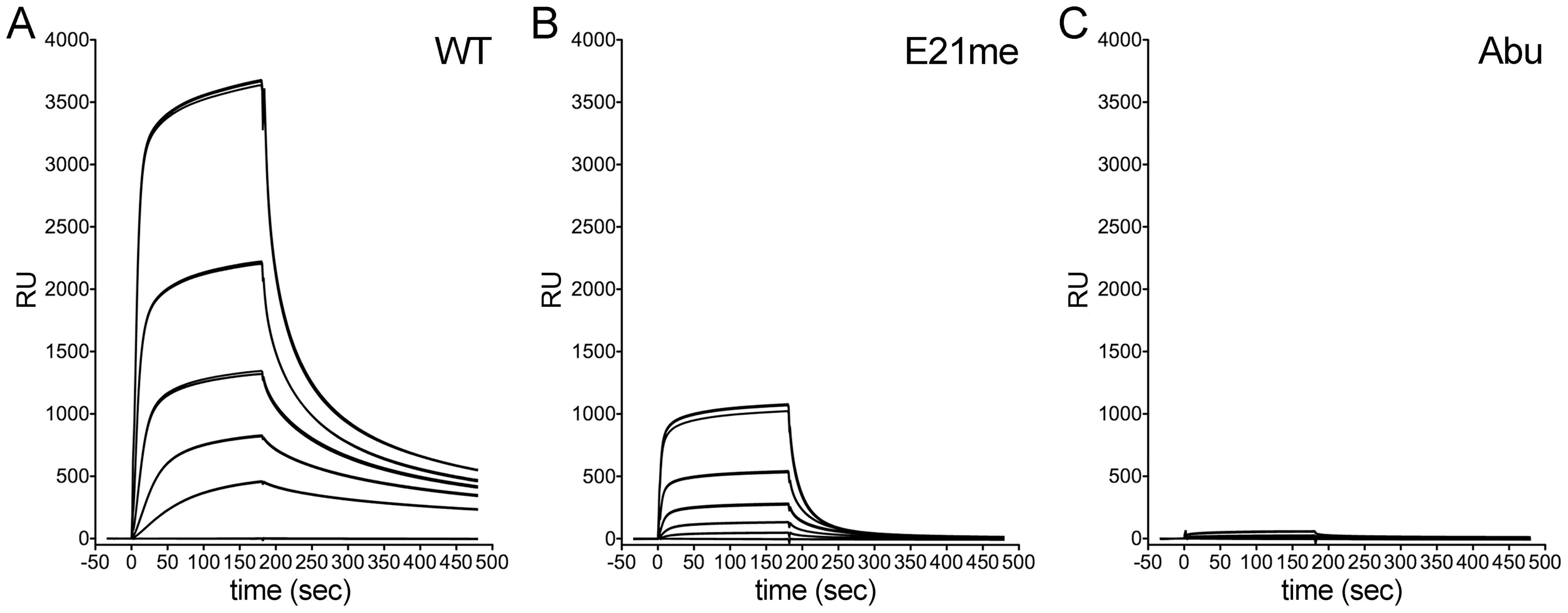 Binding of control HD5 ligands to immobilized rPenton.