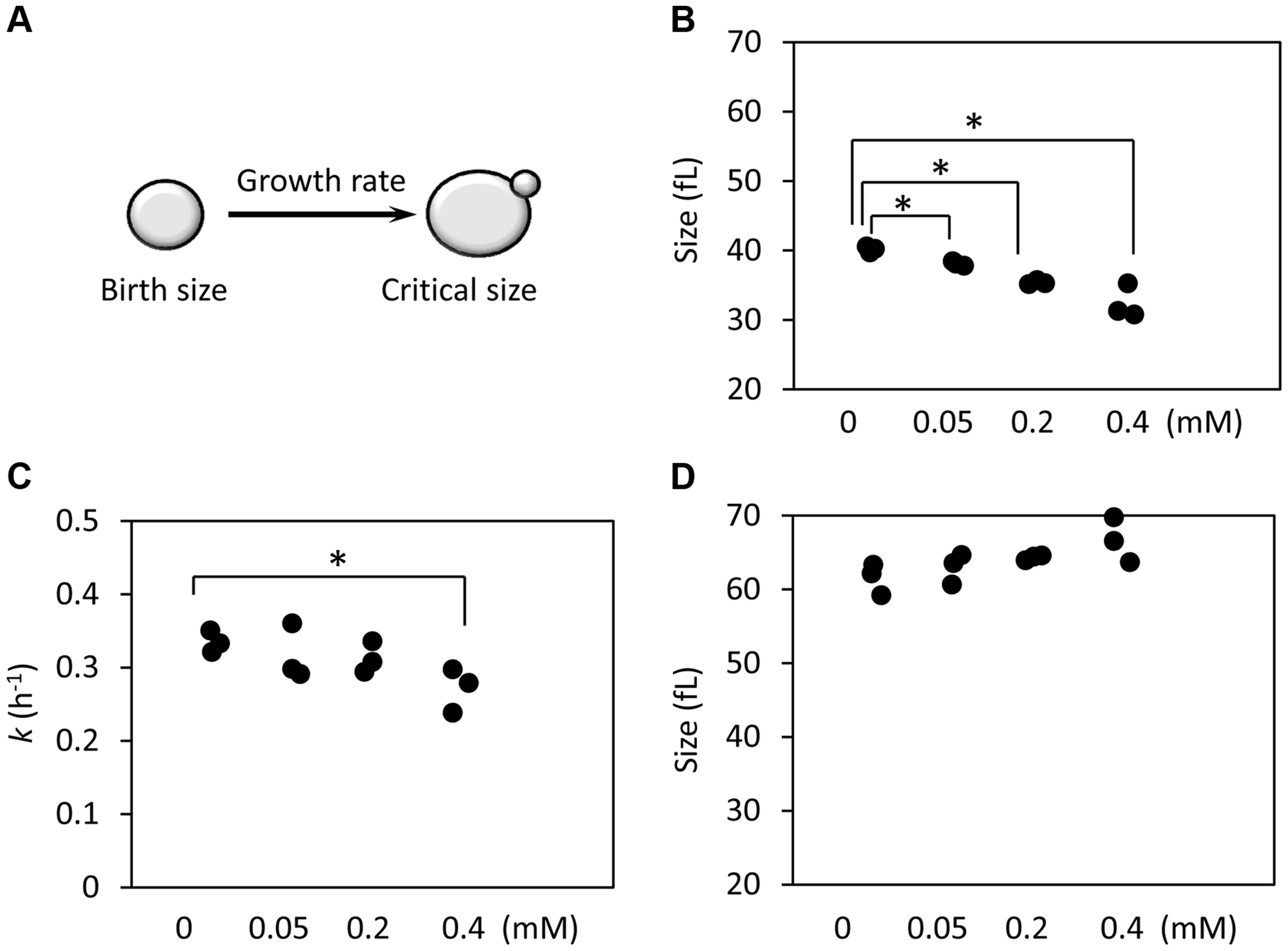 Ibuprofen at low doses moderately delays G1, primarily through a reduction in birth size.
