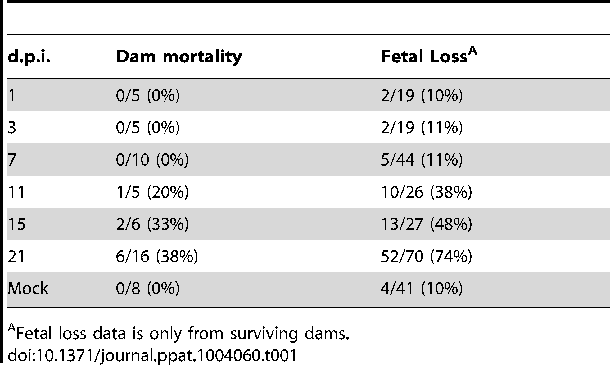 Maternal mortality and fetal loss in GPCMV-infected guinea pigs.