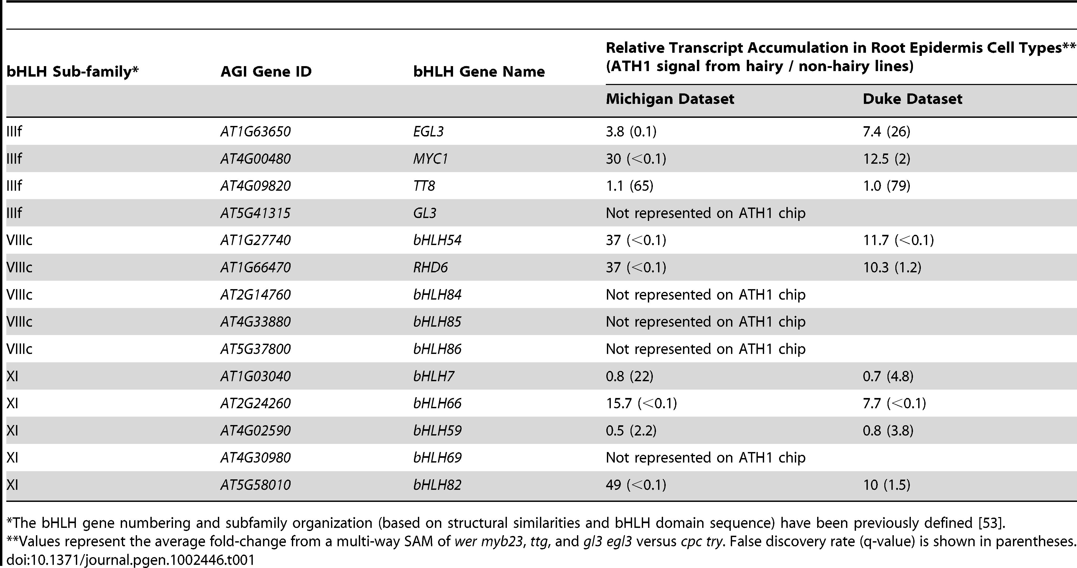 Three subfamilies of bHLH genes in Arabidopsis involved in root epidermis development.