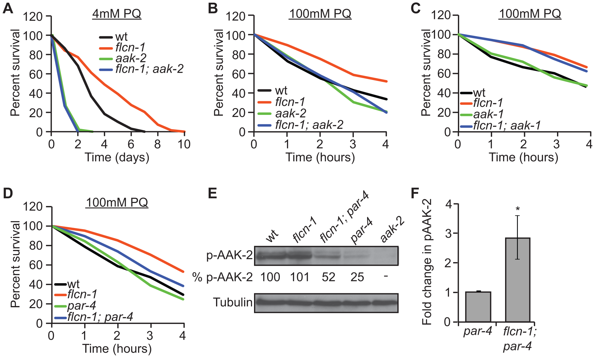 Loss of <i>flcn-1</i> confers an <i>aak-2</i>-dependent resistance to oxidative stress.