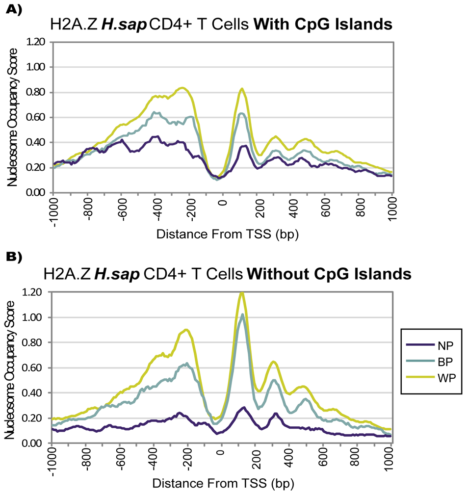 The Presence of a CpG Island Alone Does Not Imply Distinct Chromatin Architecture.