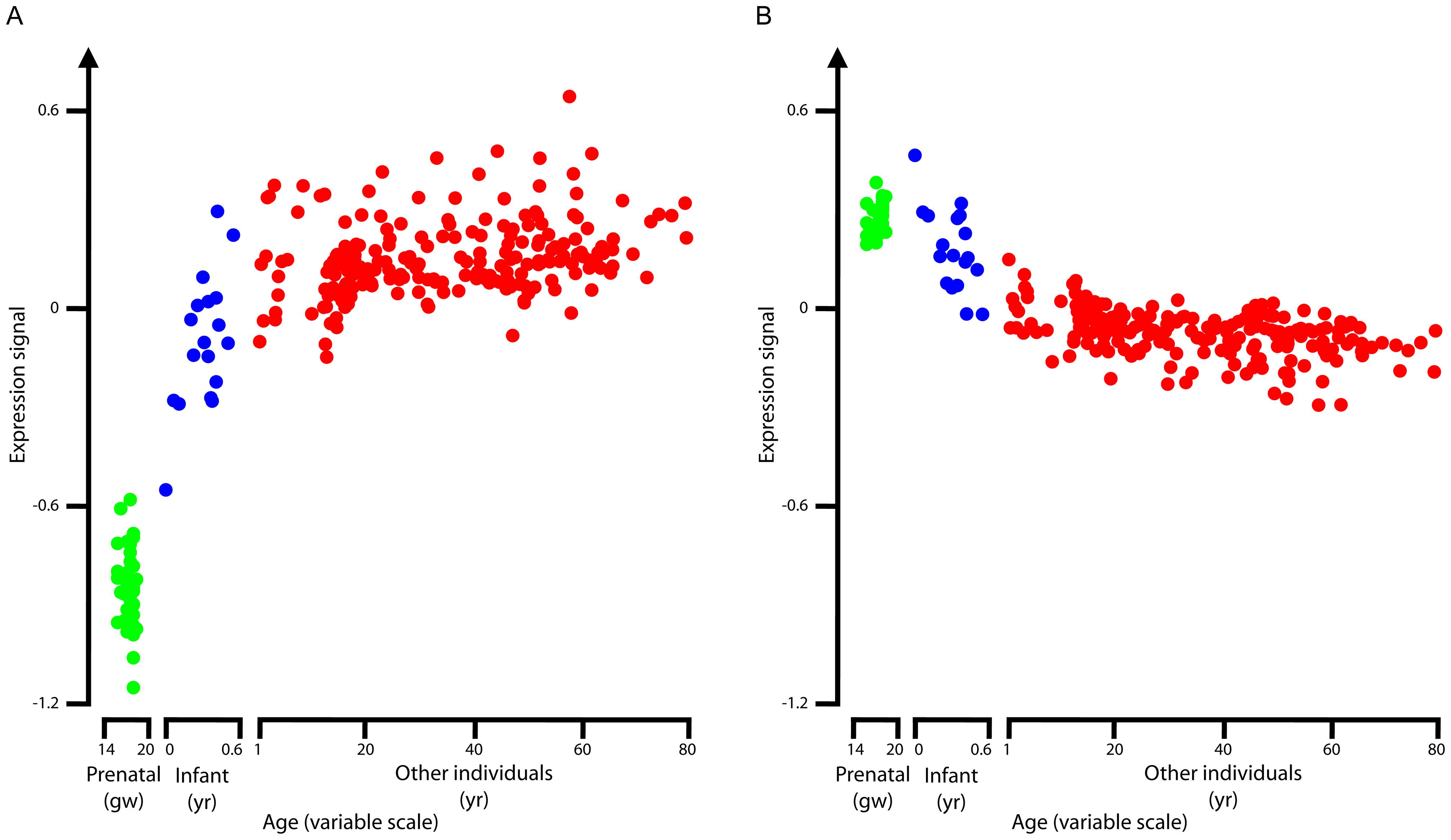 Average RNA expression levels.