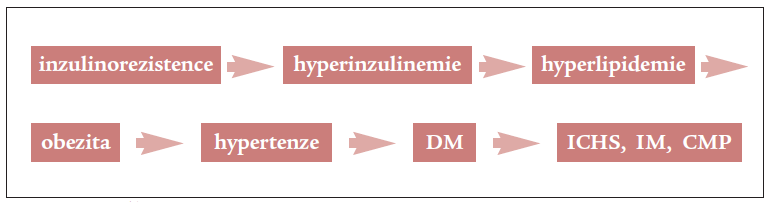 Schéma 1. Časový vývoj syndromu inzulinové rezistence.