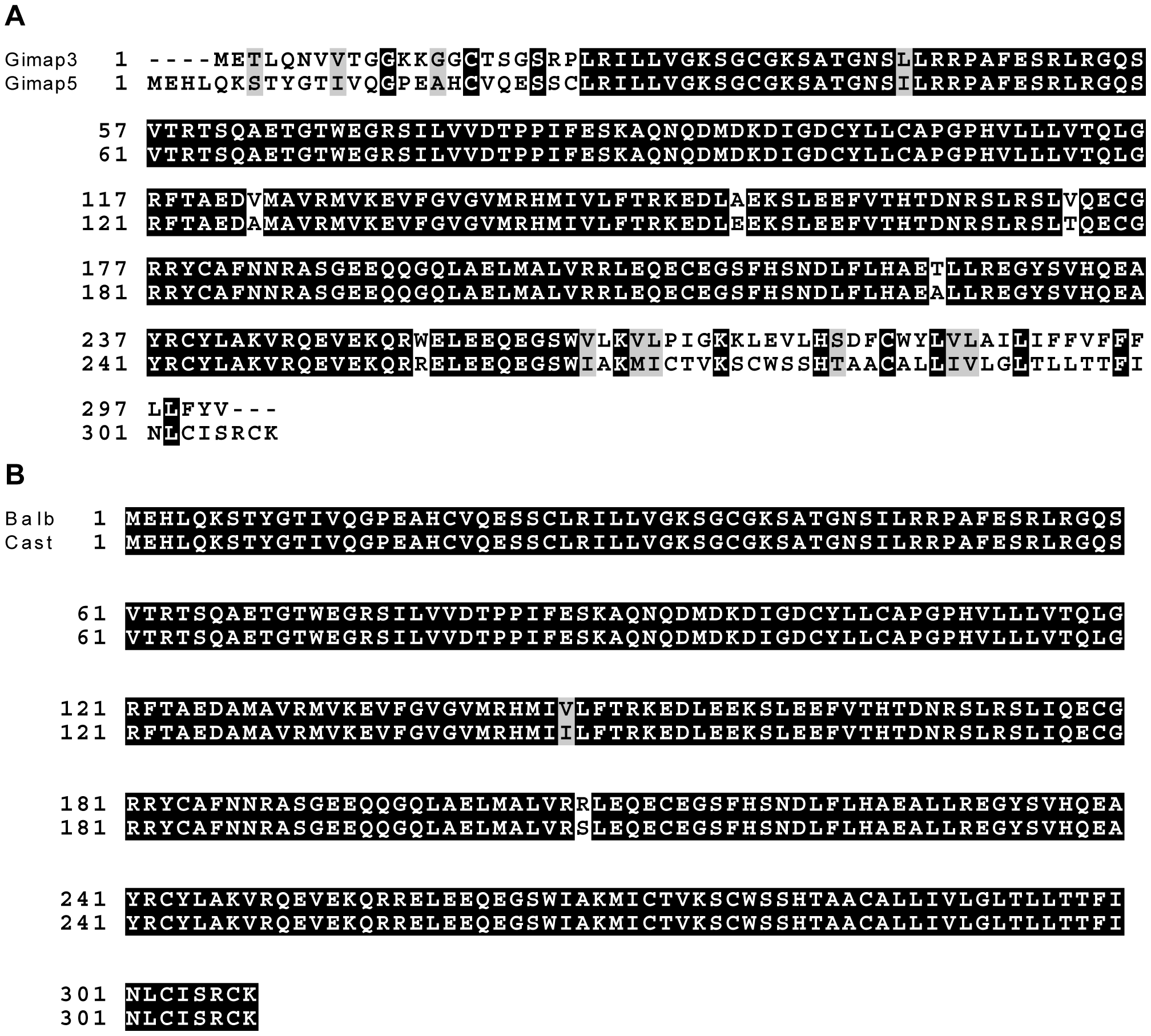 Gimap3 and Gimap5 protein sequences.