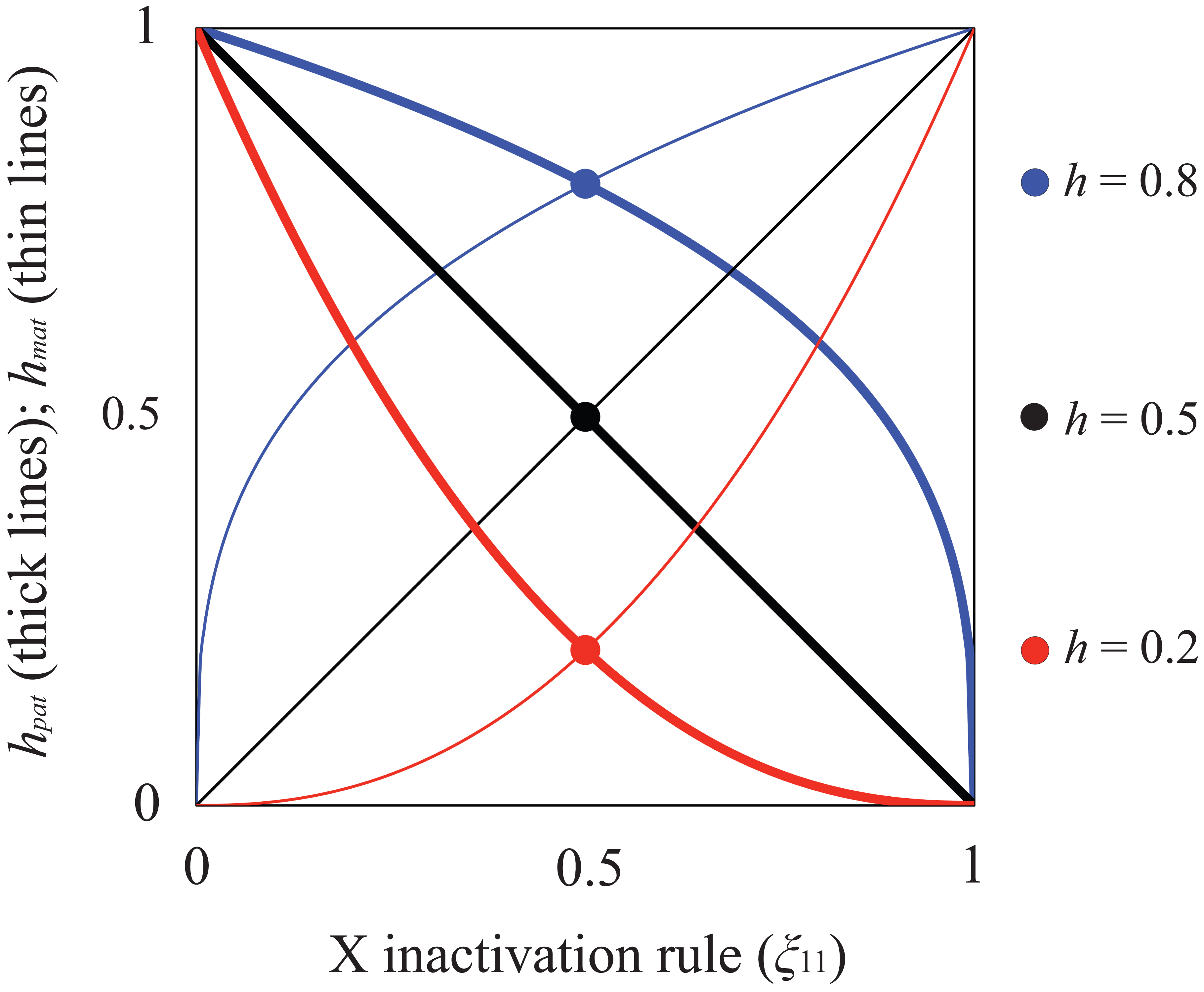 """Relationship between X inactivation rule and parent-of-origin dominance coefficients (<b><i>h<sub>mat</sub></i></b><b>, </b><b><i>h<sub>pat</sub></i></b><b>; see </b><em class=""""ref""""><b>Table 1</b></em><b>).</b>"""