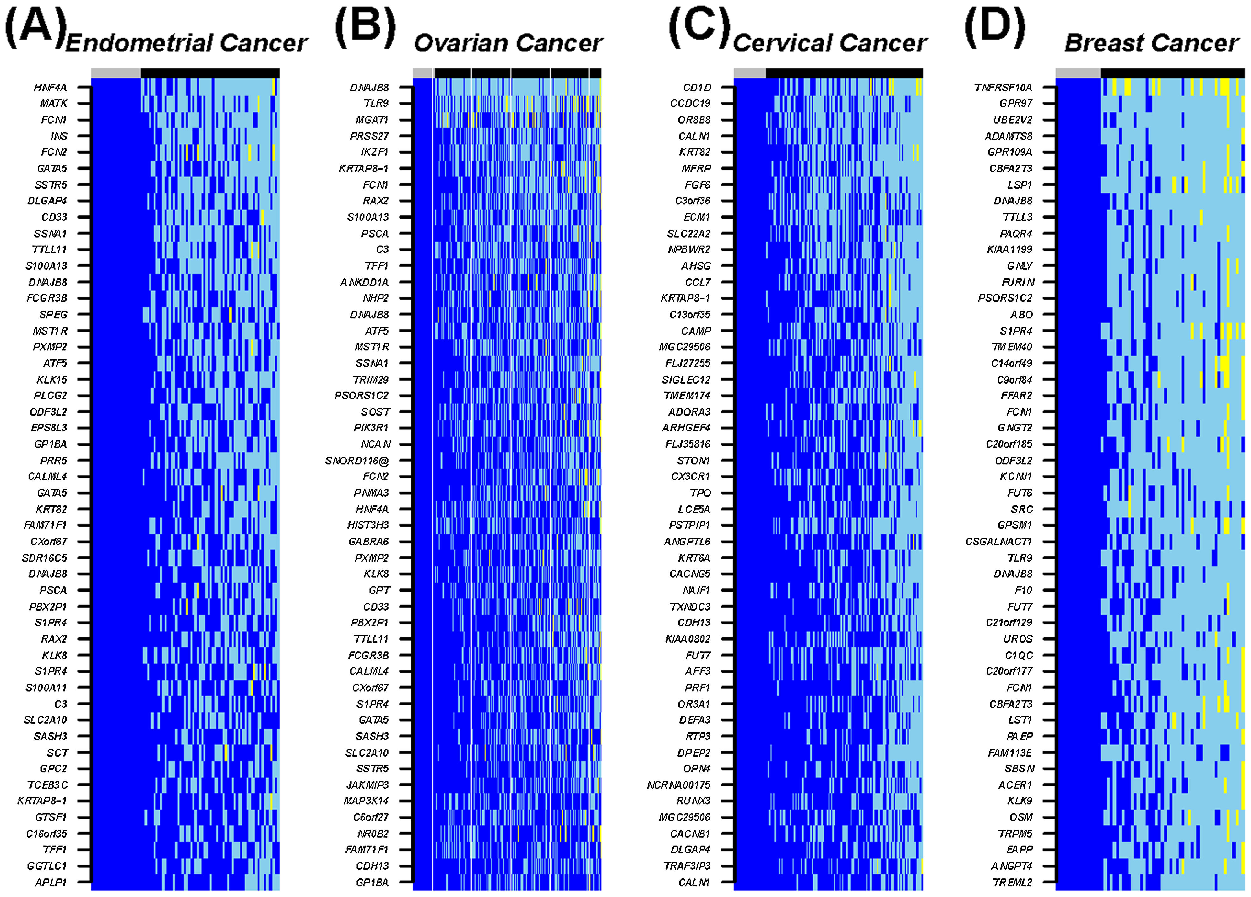 Heatmap of the top 50 most frequently hypomethylated MESCs in cancers.