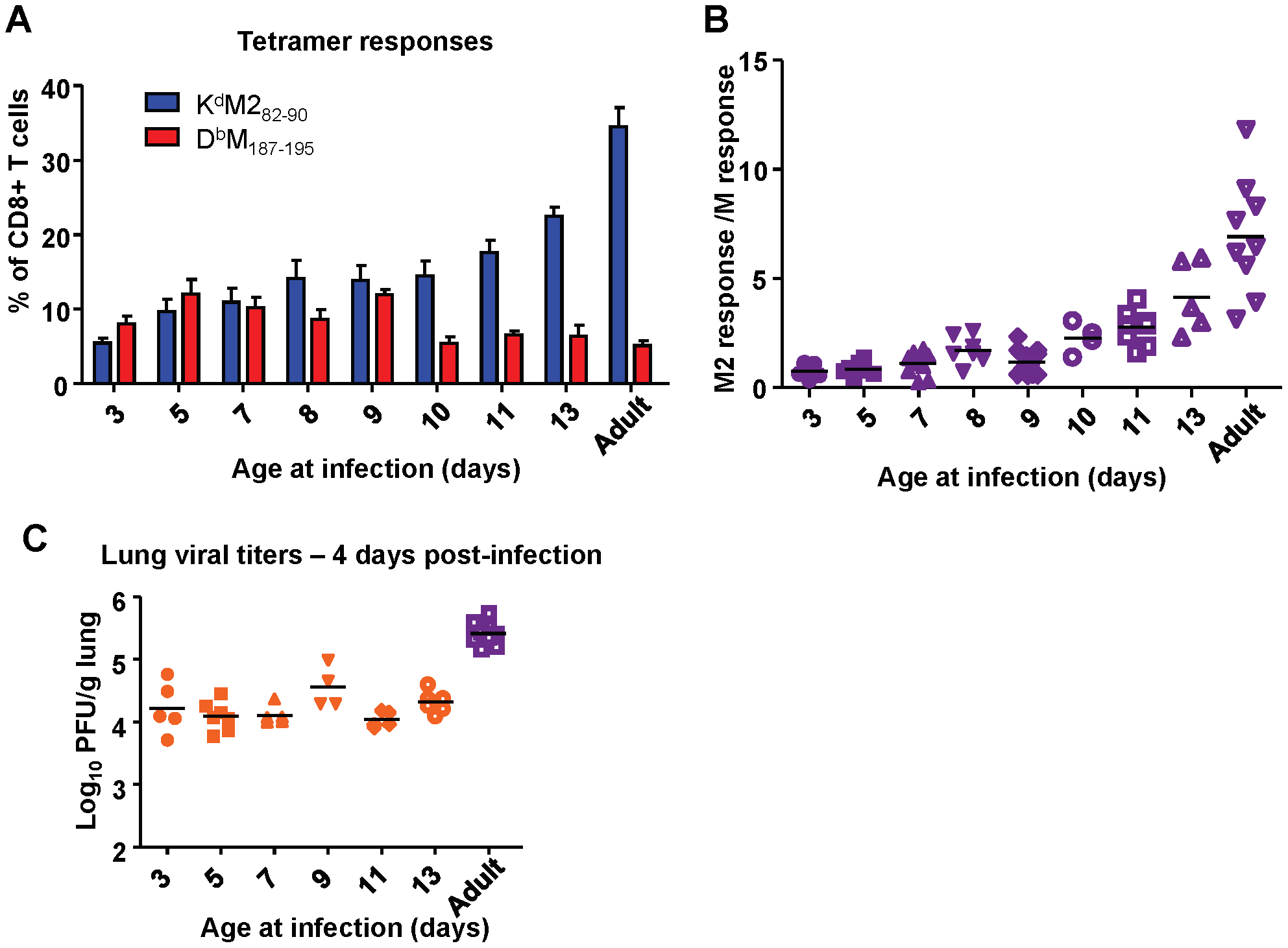 Age at infection determines CD8+ T cell epitope hierarchy.
