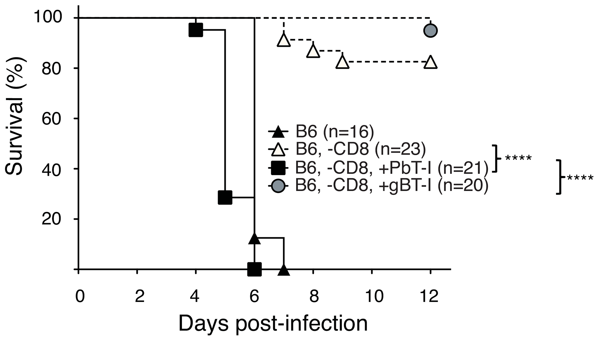 PbT-I cells induce ECM in mice lacking endogenous CD8<sup>+</sup> T cells.