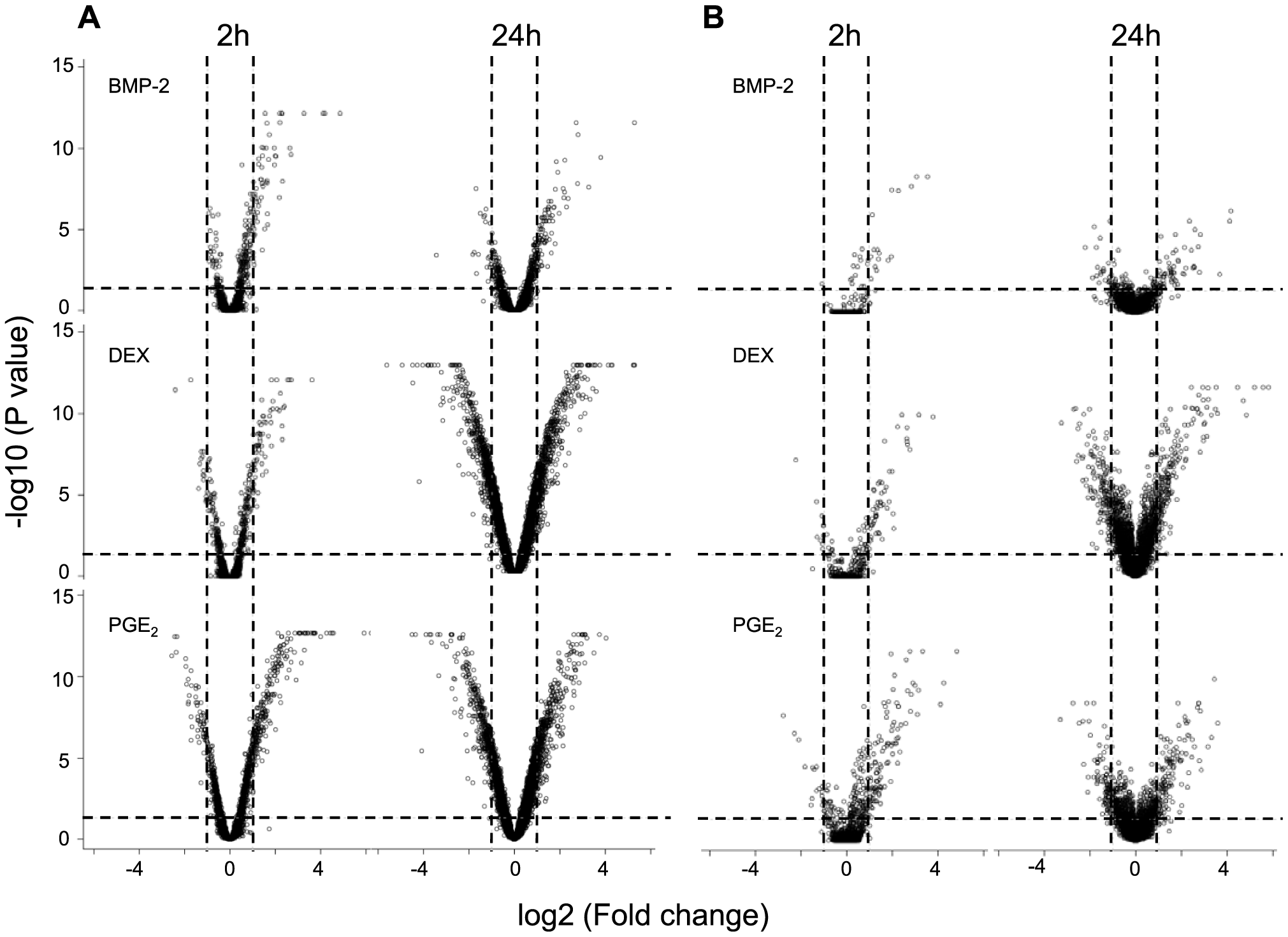 Global response on gene expression upon environmental perturbation.