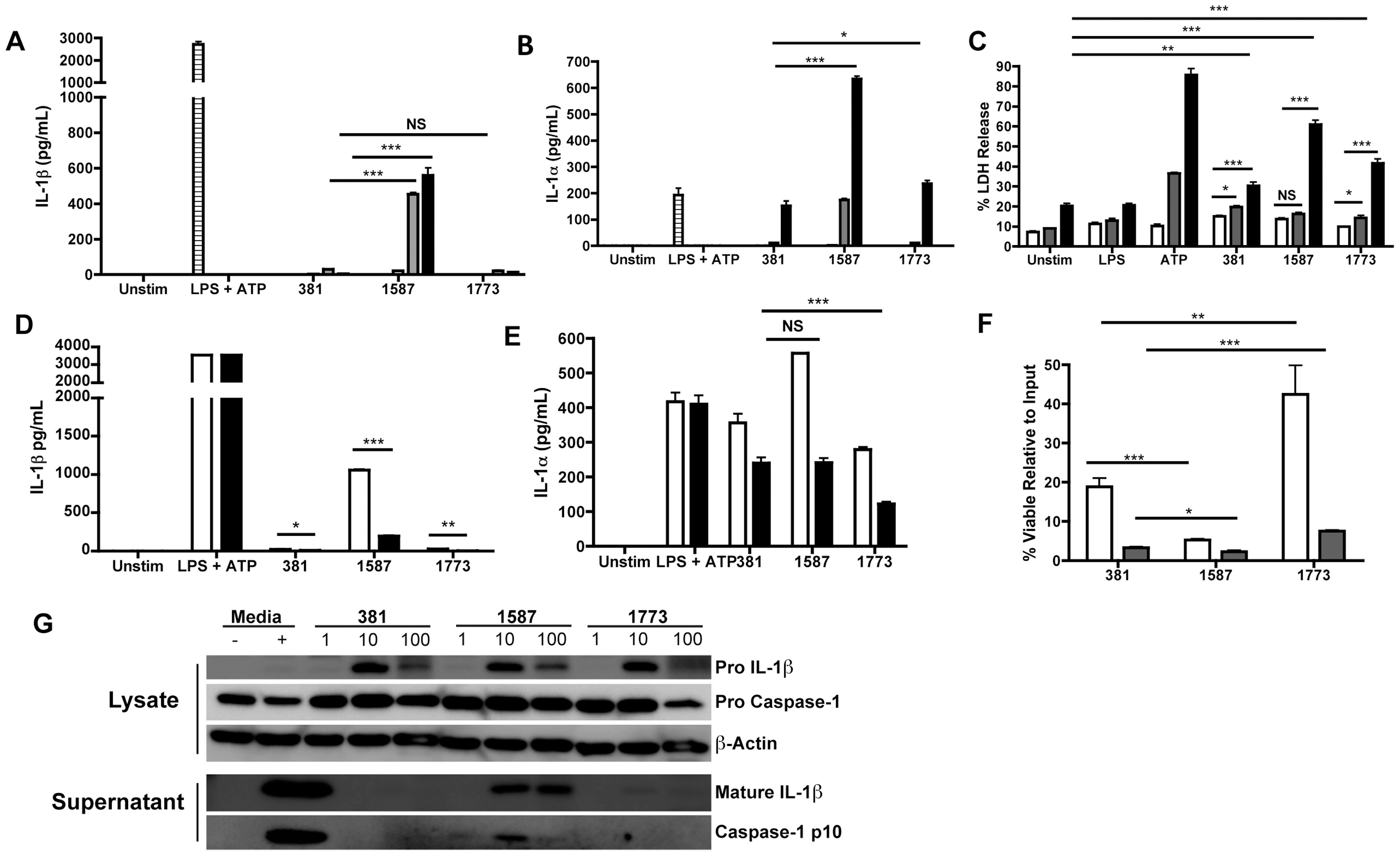 <i>P. gingivalis</i> evades activation of the inflammasome through expression of modified lipid A species.