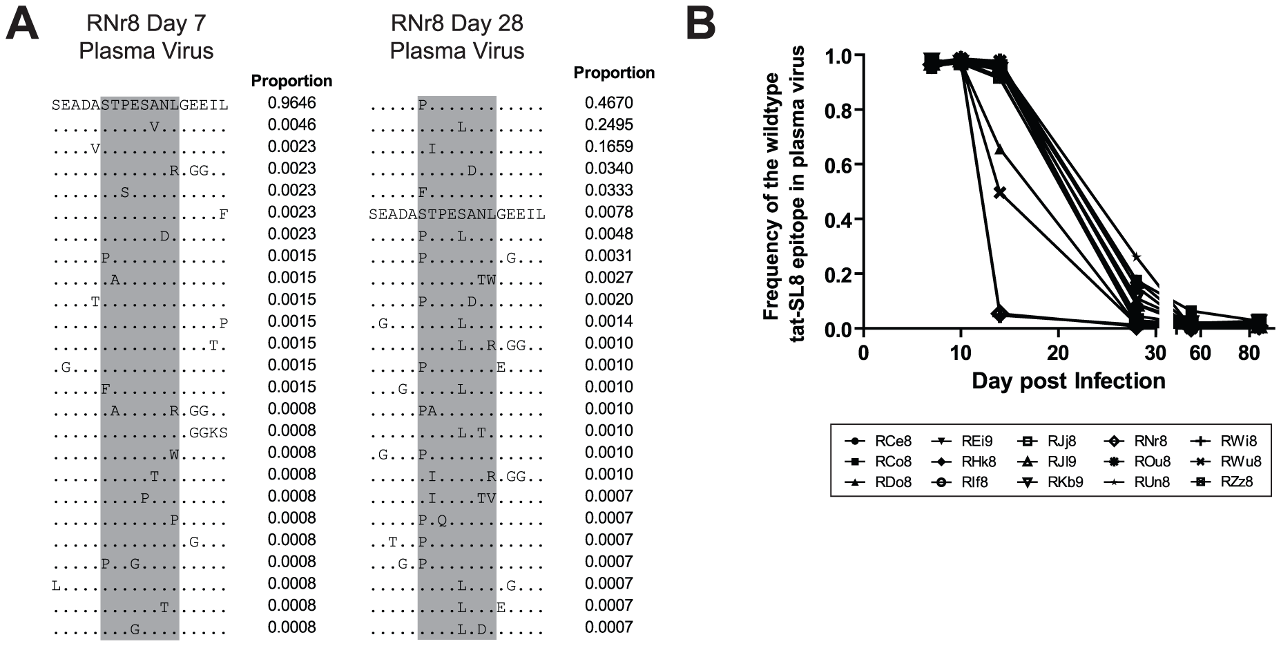 The tat-SL8 MamuA*01-restricted SIVmac239 CD8 T cell epitope escaped rapidly in the plasma virus via multiple amino acid substitutions during the acute phase of infection.