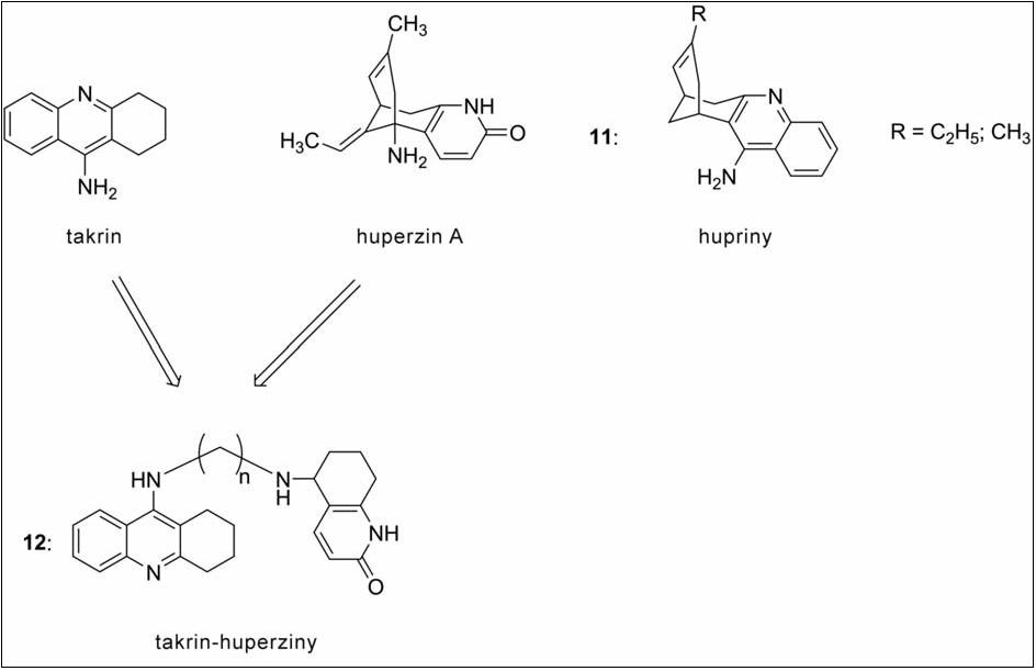 Takrin-huperzinové deriváty a hupriny