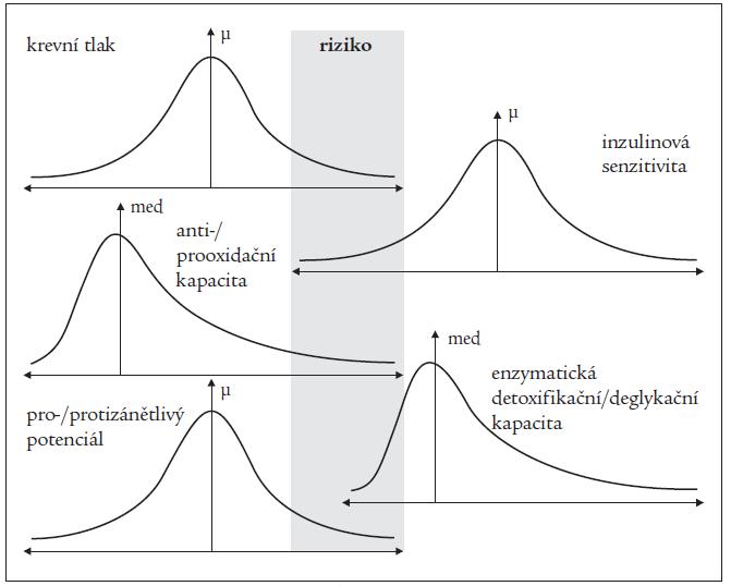 Hypotetická populační distribuce relevantních metabolických a hemodynamických parametrů jako důsledek genetické variability.