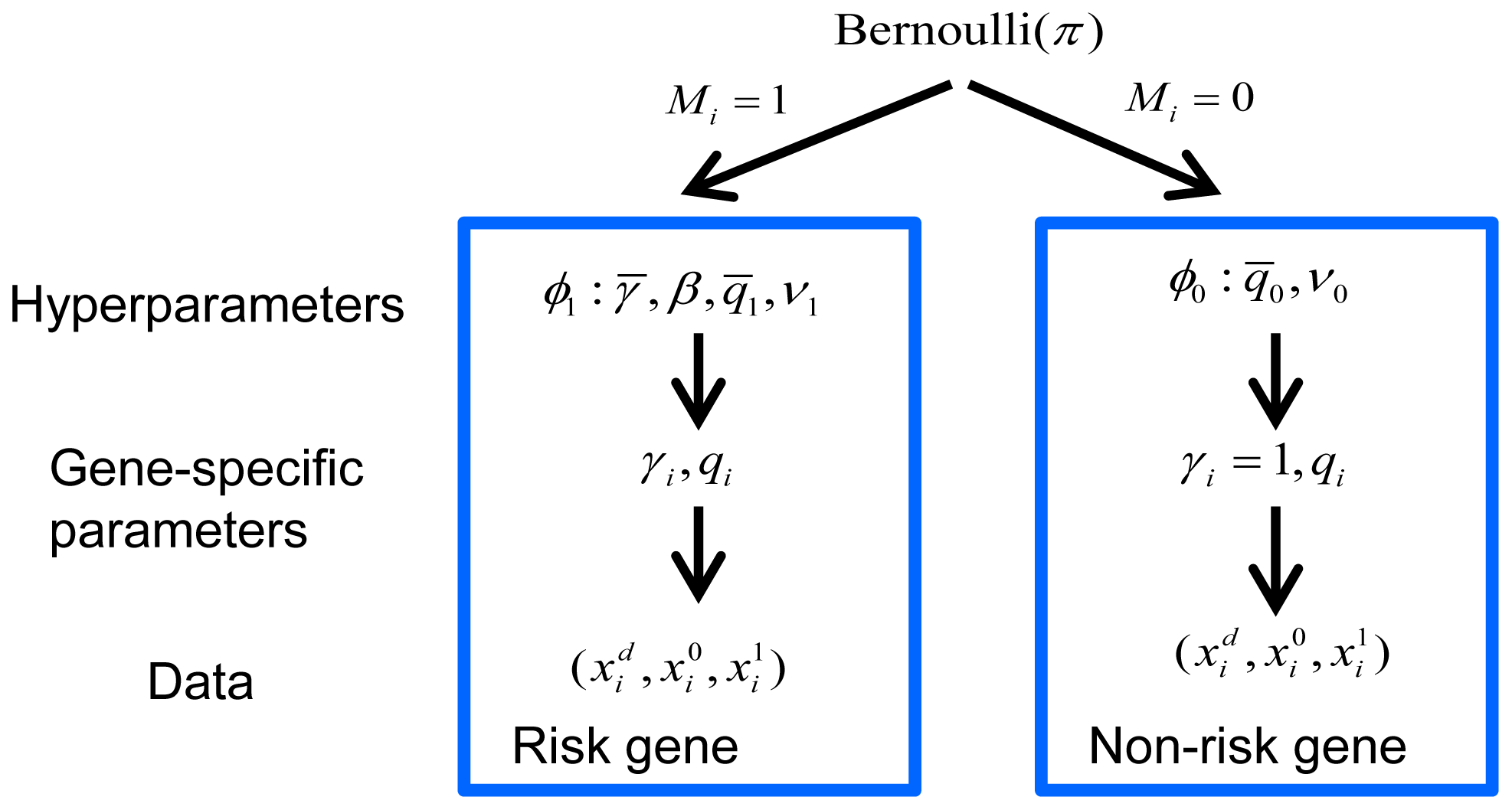 Bayesian hierarchical model of TADA.