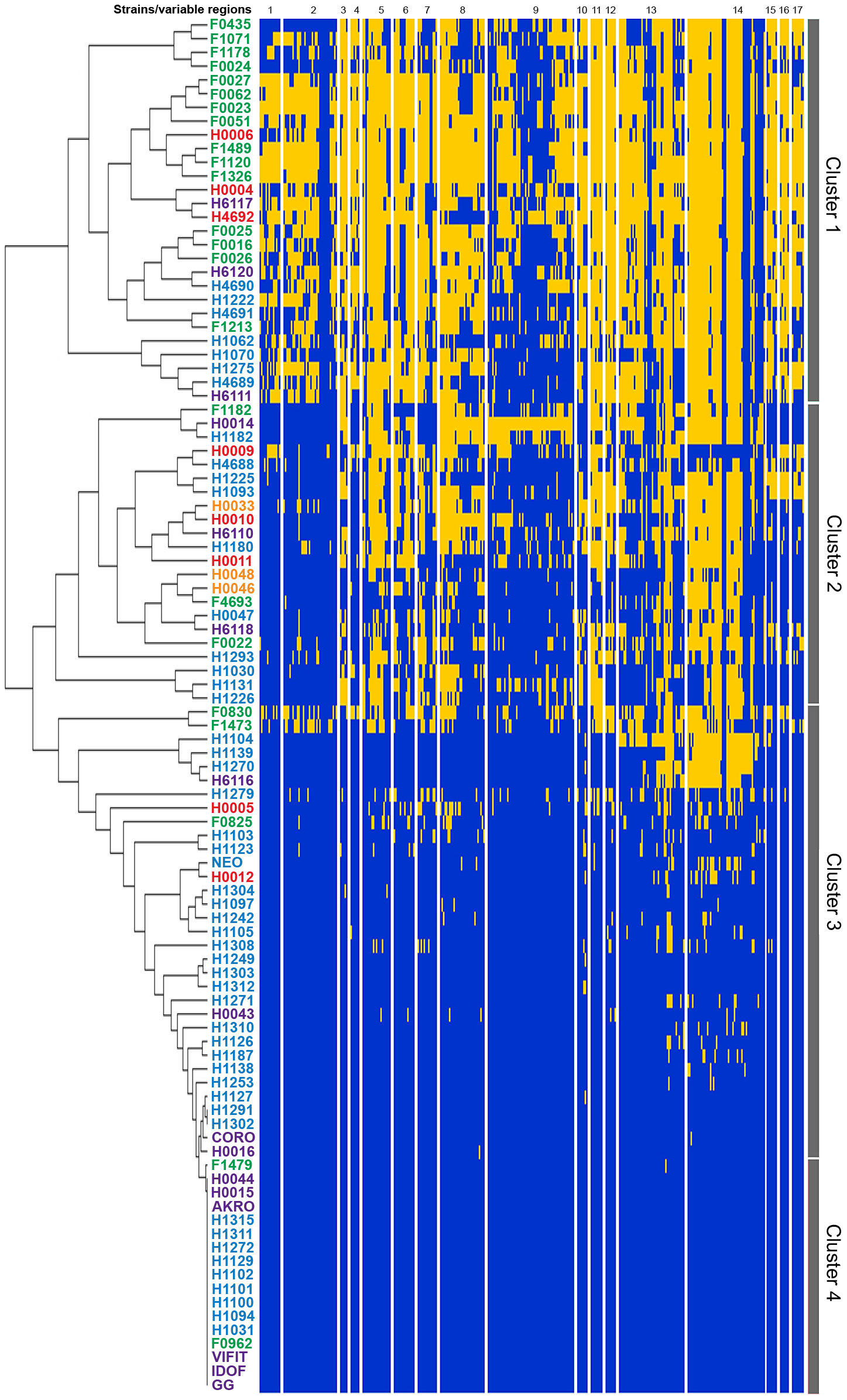 Analysis of genome diversity in <i>L. rhamnosus</i> by mapped SOLiD sequencing.