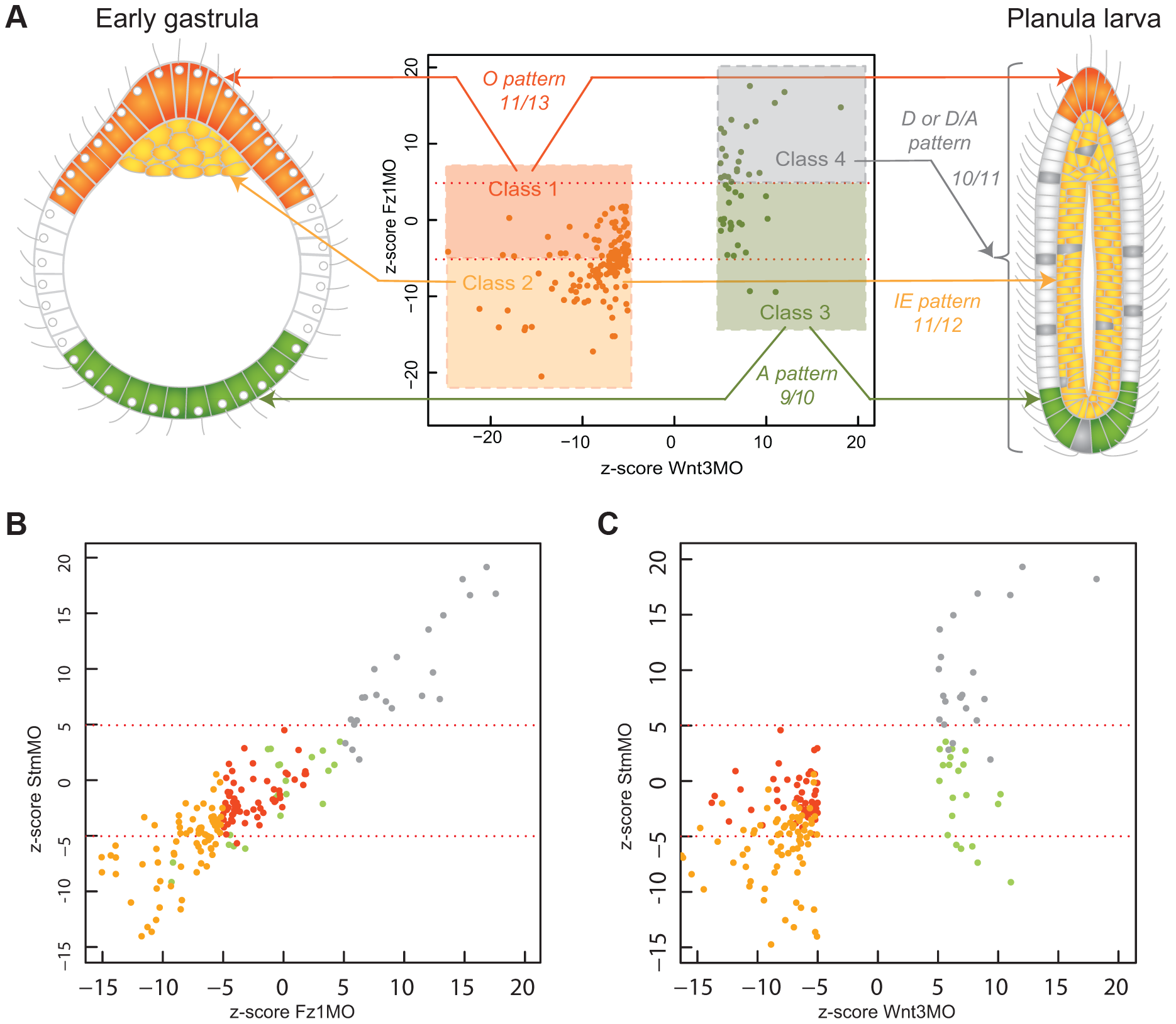 DGE responses correlate with spatial expression profiles.
