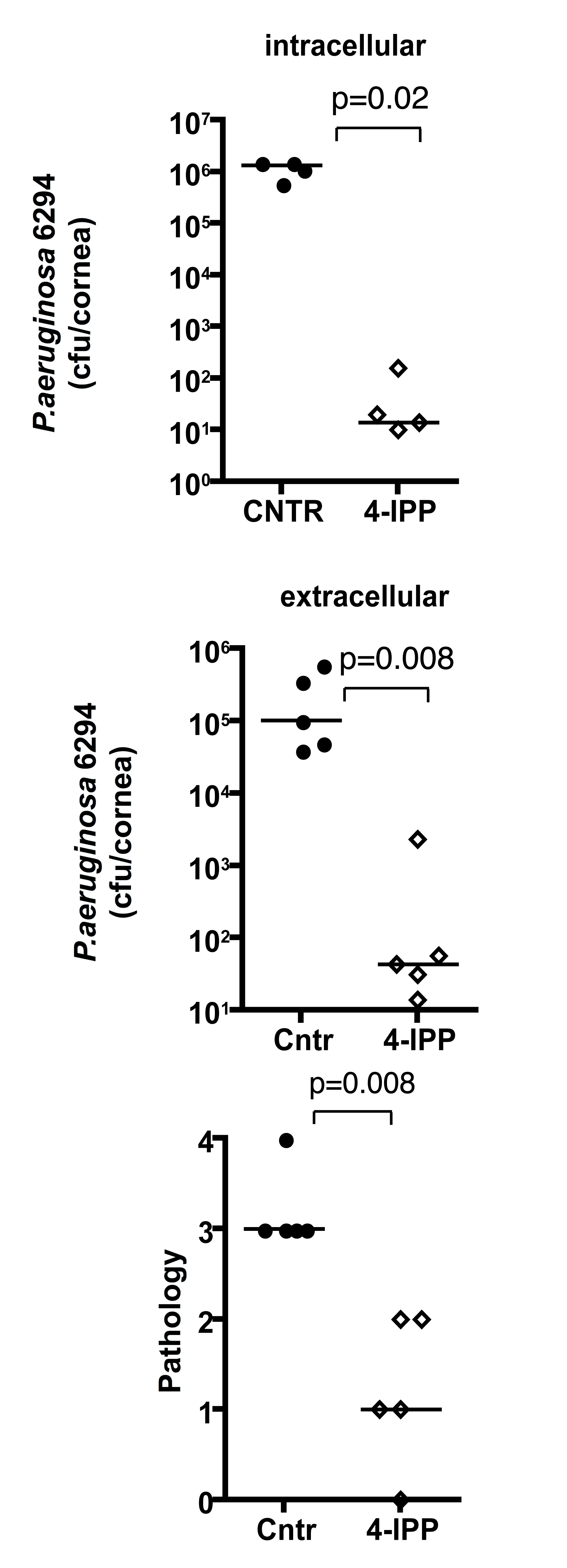 Treatment with 4-IPP promotes recovery from <i>P. aeruginosa</i>-induced corneal infection and pathology.