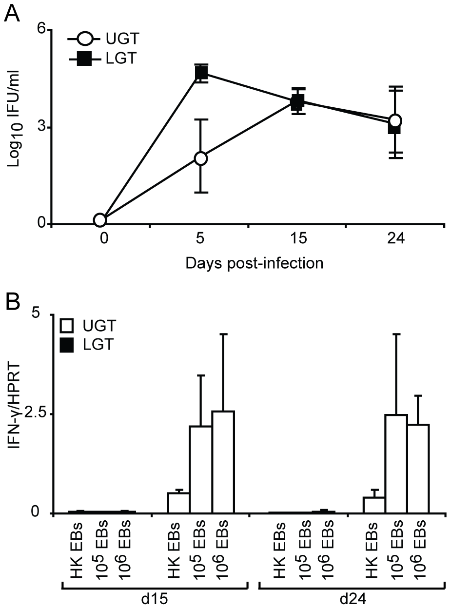 The dichotomy between upper and lower genital tract remains regardless of infectious dose.