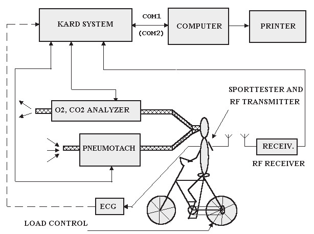 Fig. 1: Block diagram of measuring system for non-invasive CEPT. The cycle or treadmill ergometer can be used.