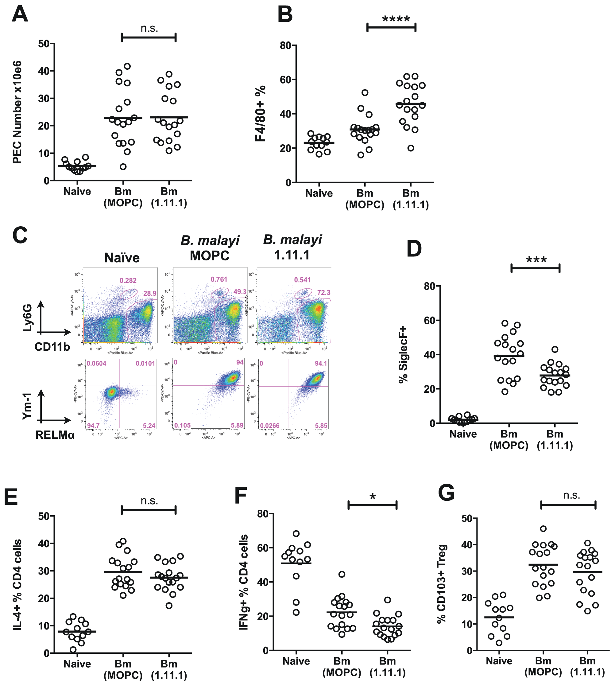 Altered T cell, eosinophil and macrophage responses in mice receiving neutralising anti-Bm-TPI monoclonal antibody.