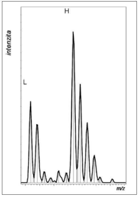 """Obr. 3b. Detail MS spektra s peptidem označeným """"lehkou"""" (L) a těžkou (H) variantou značky. Z poměru signálů lze určit změnu exprese odpovídajícího proteinu ve srovnávaných vzorcích."""