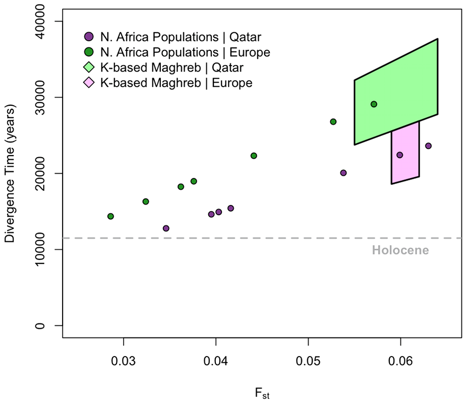 Divergence time estimates among European, Maghrebi, and Near Eastern ancestral populations.