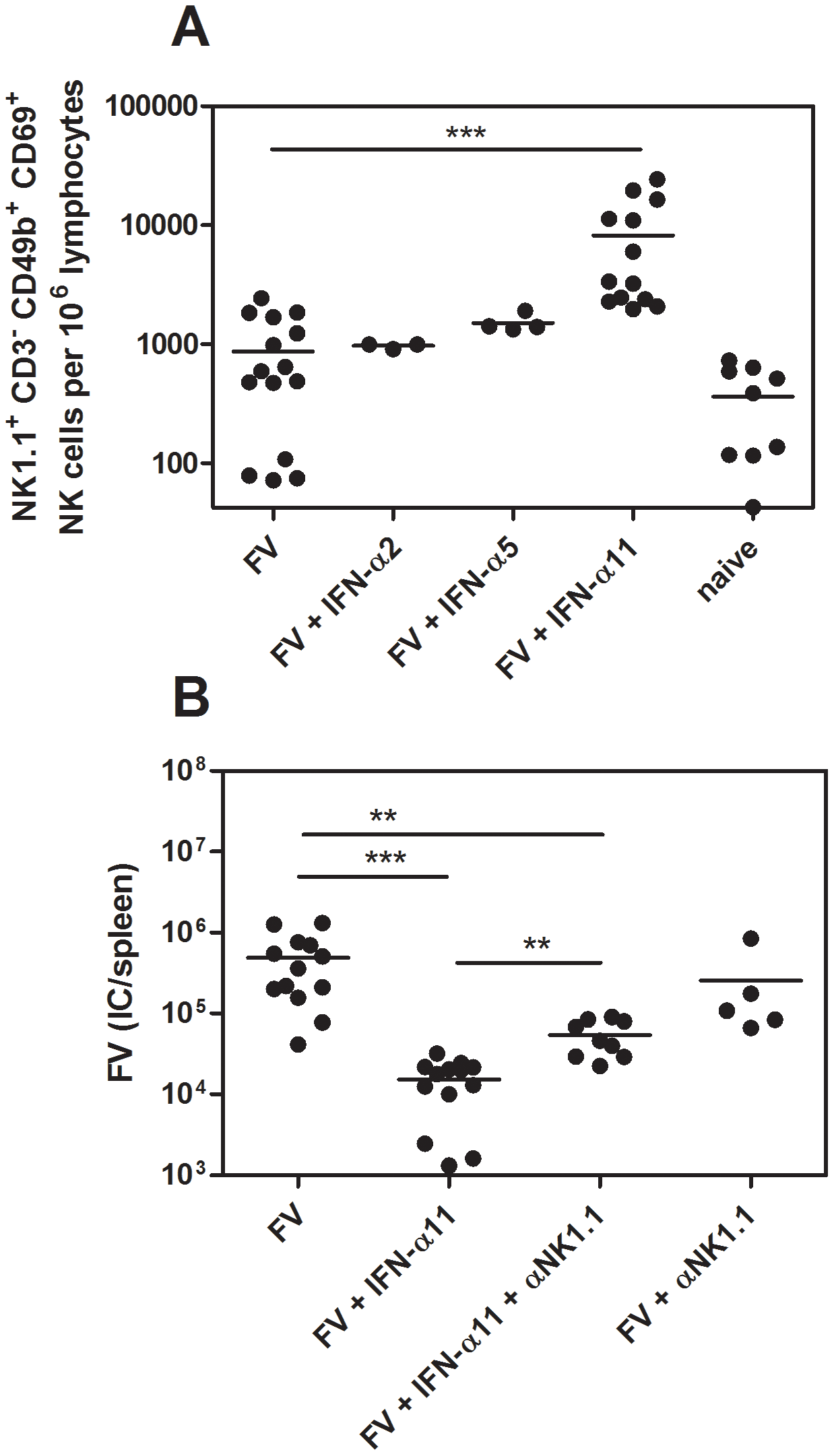Analysis of NK cells from IFN-α11-treated mice.
