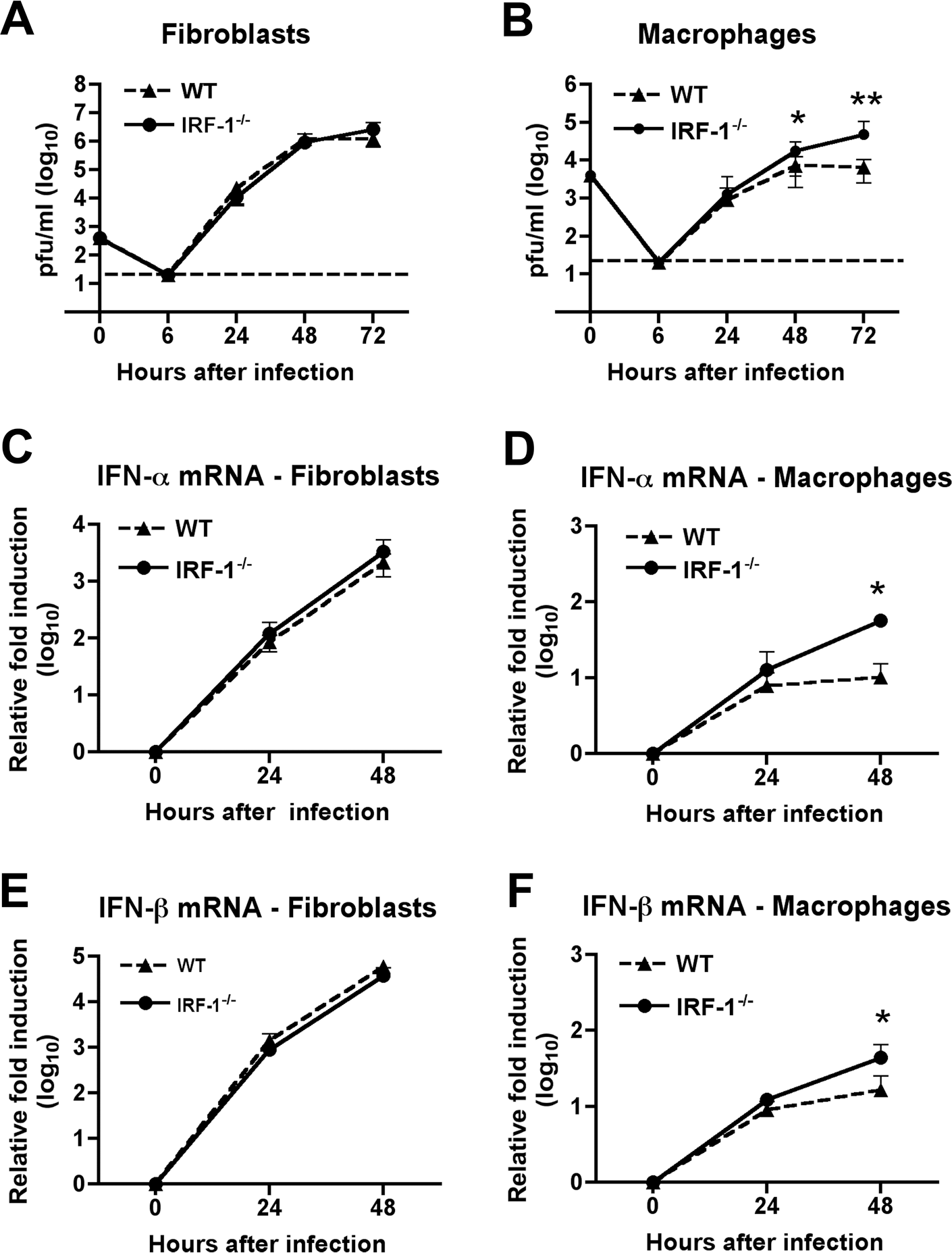 IRF-1 modulates WNV infection in primary Mφ but not in MEF.