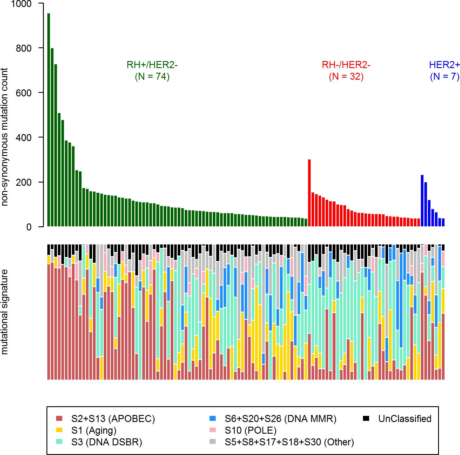 COSMIC mutational signature contribution in mBC.