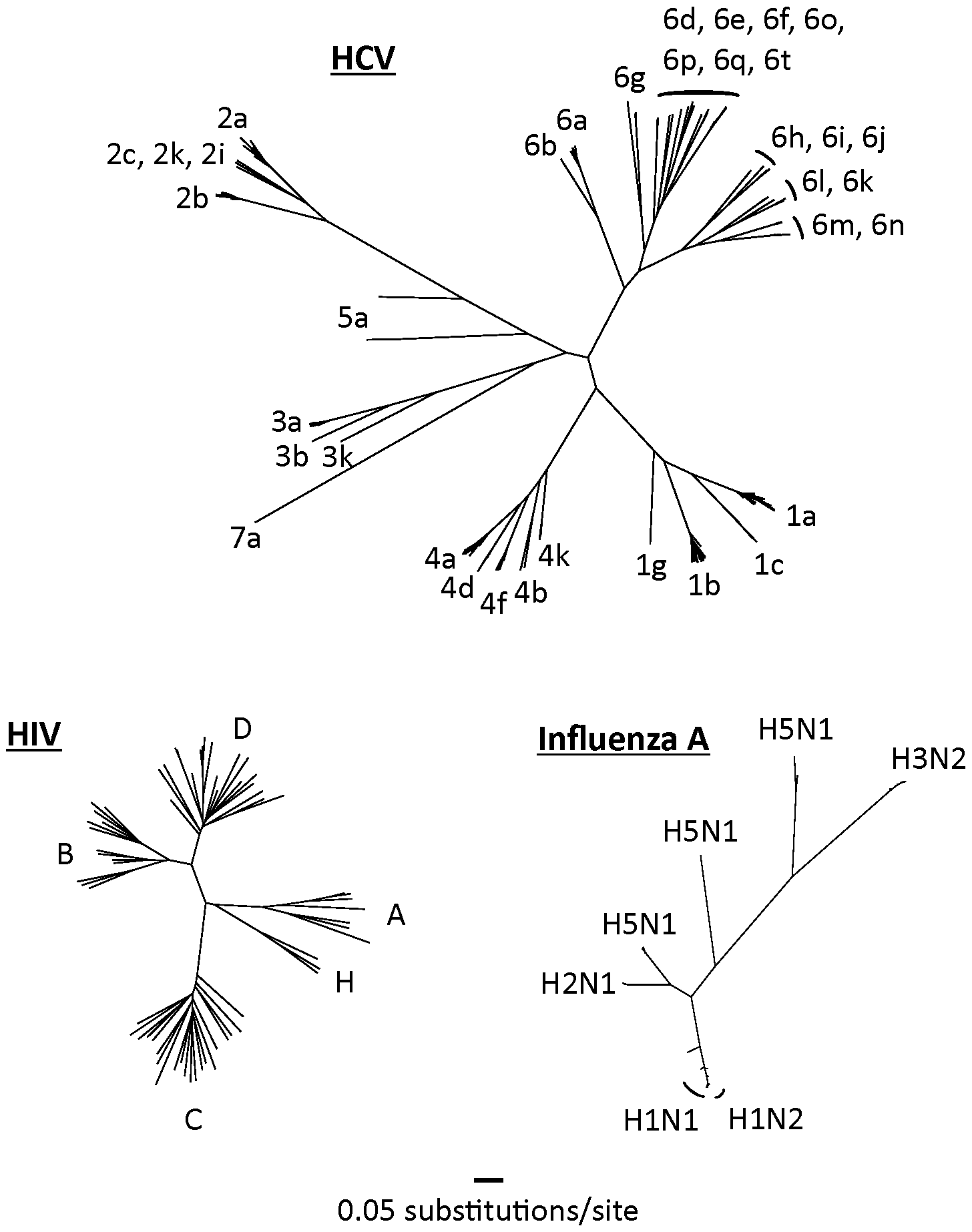 Complete genome trees of the hepatitis C virus, HIV-1 (M-group), and the hemagglutinin region of influenza A.