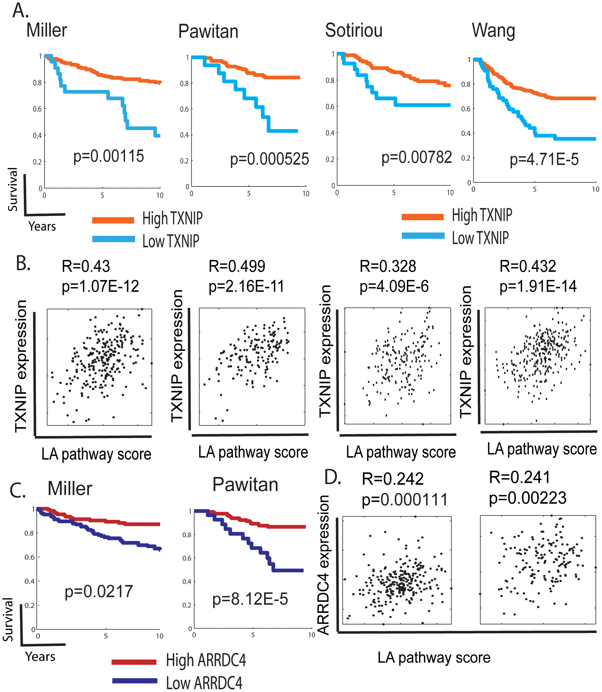The expression of TXNIP, ARRDC4, and lactic acidosis pathways in human cancers.