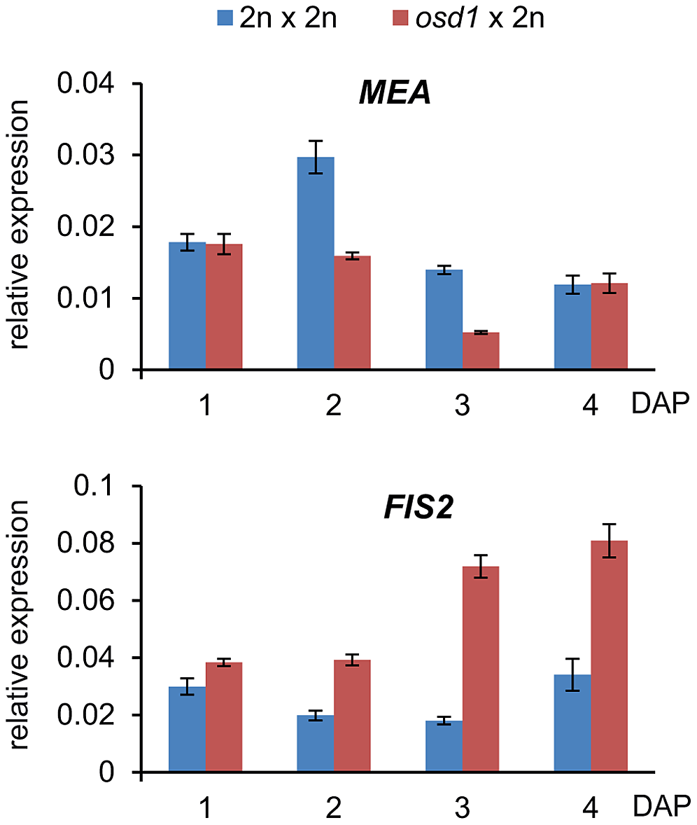 Expression Level of <i>FIS2</i> but Not of <i>MEA</i> Is Increased in <i>osd1</i>×2n Crosses.