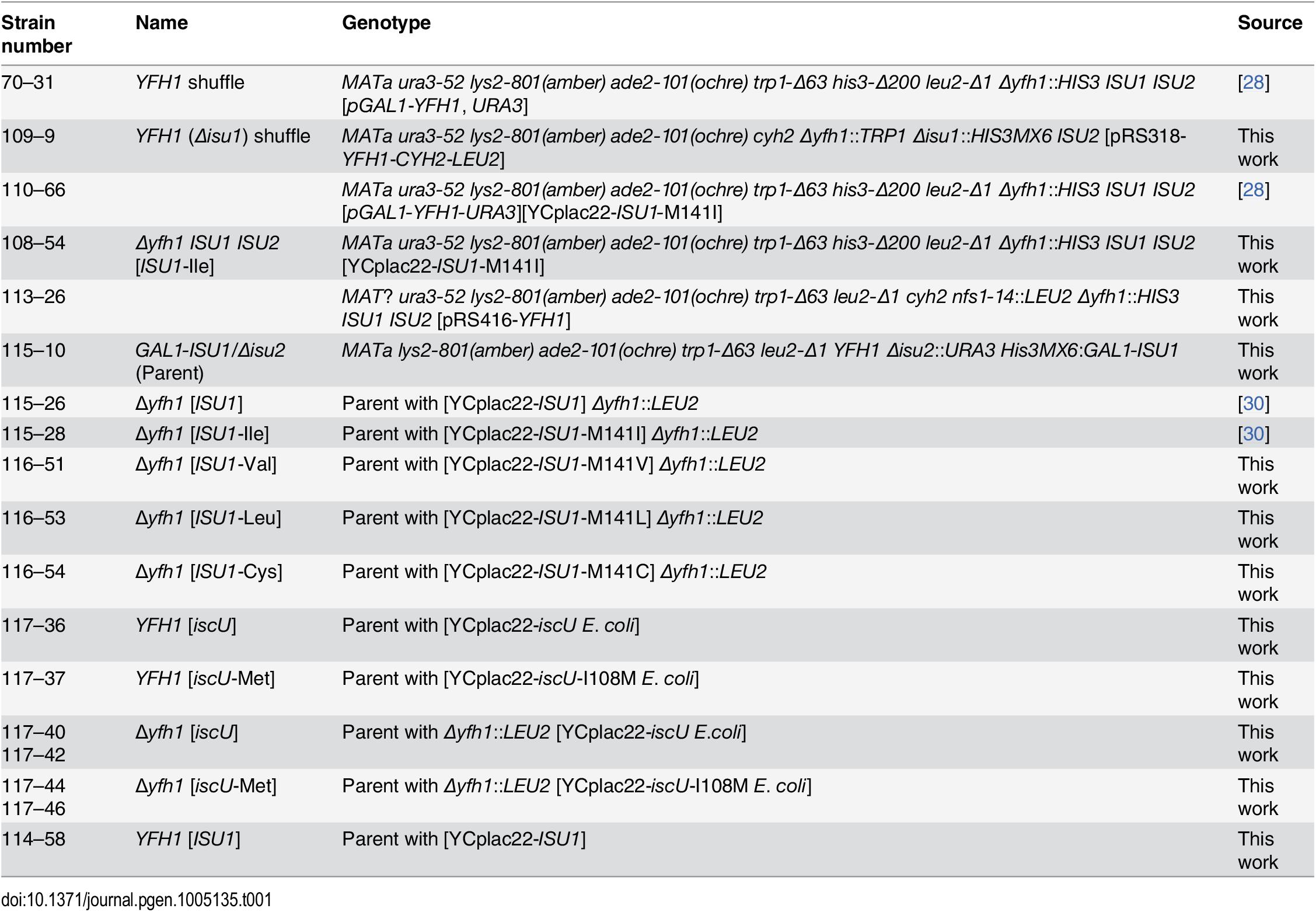 List of yeast strains.