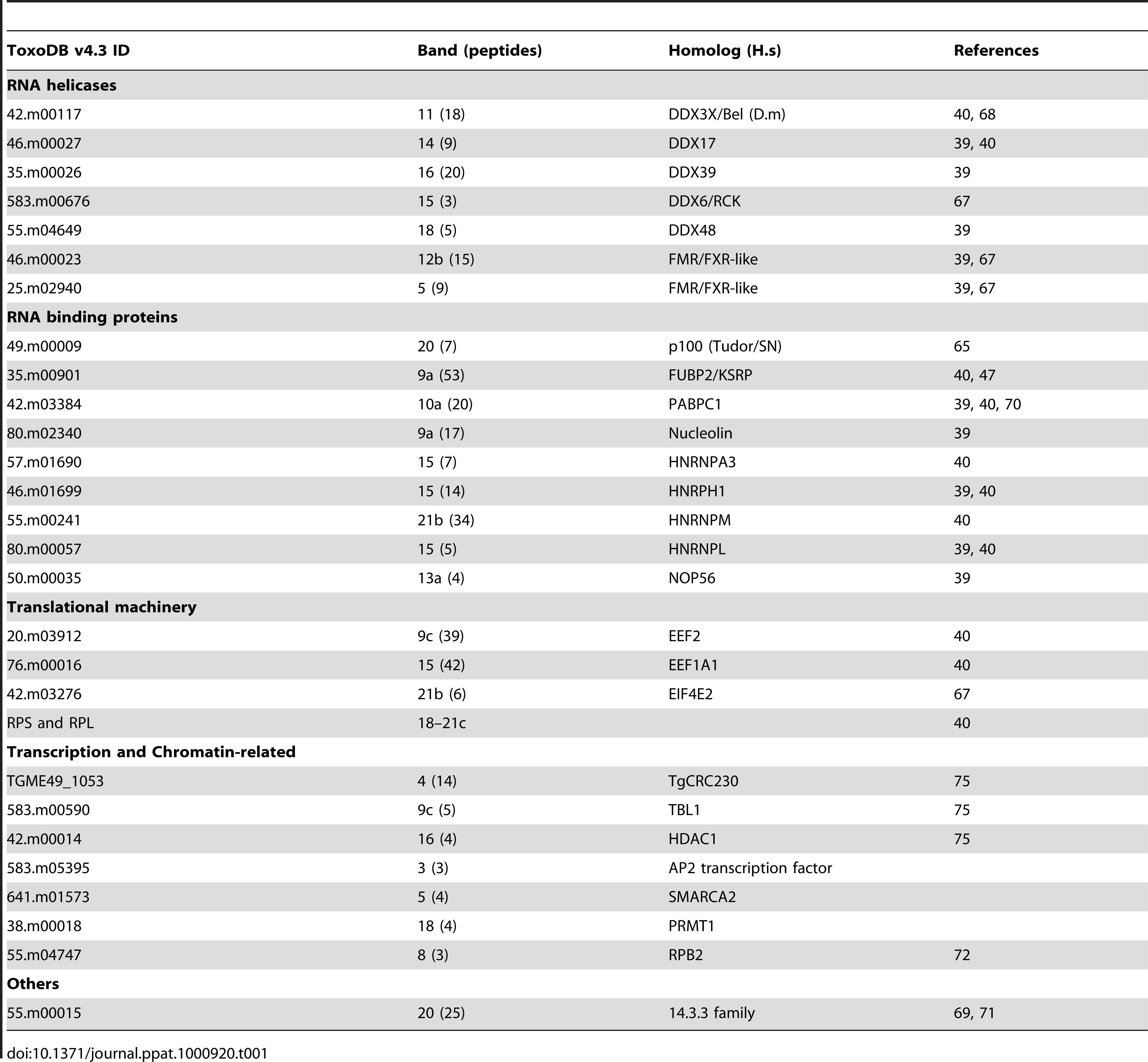 Summary of <i>Tg</i>-AGO-associated proteins identified by mass spectrometry.
