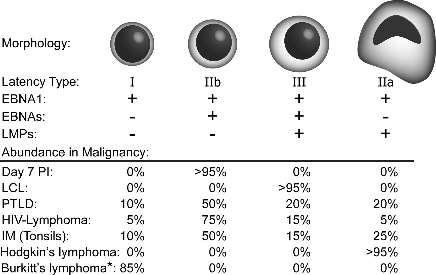 EBV latency types found in EBV-driven malignancies.