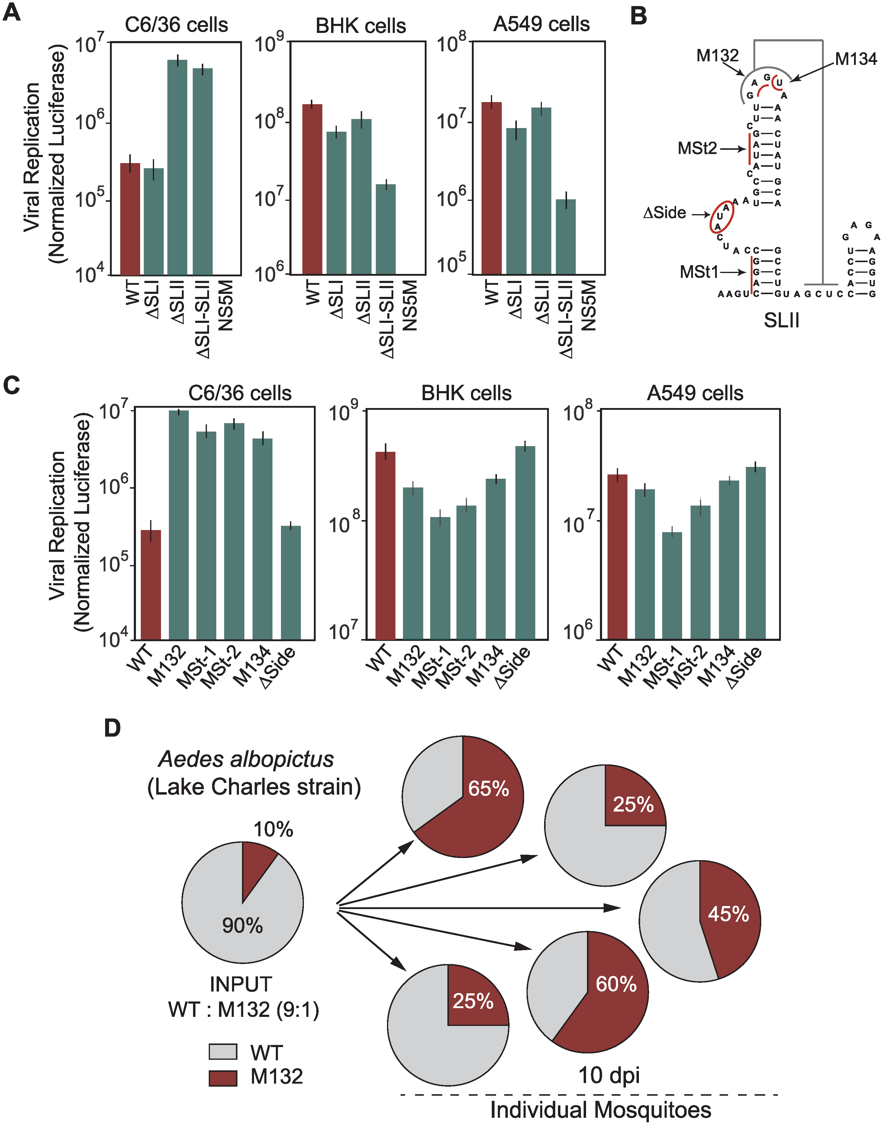 Requirements of DEN-SLI and DEN-SLII for viral replication in mosquito and human cells.
