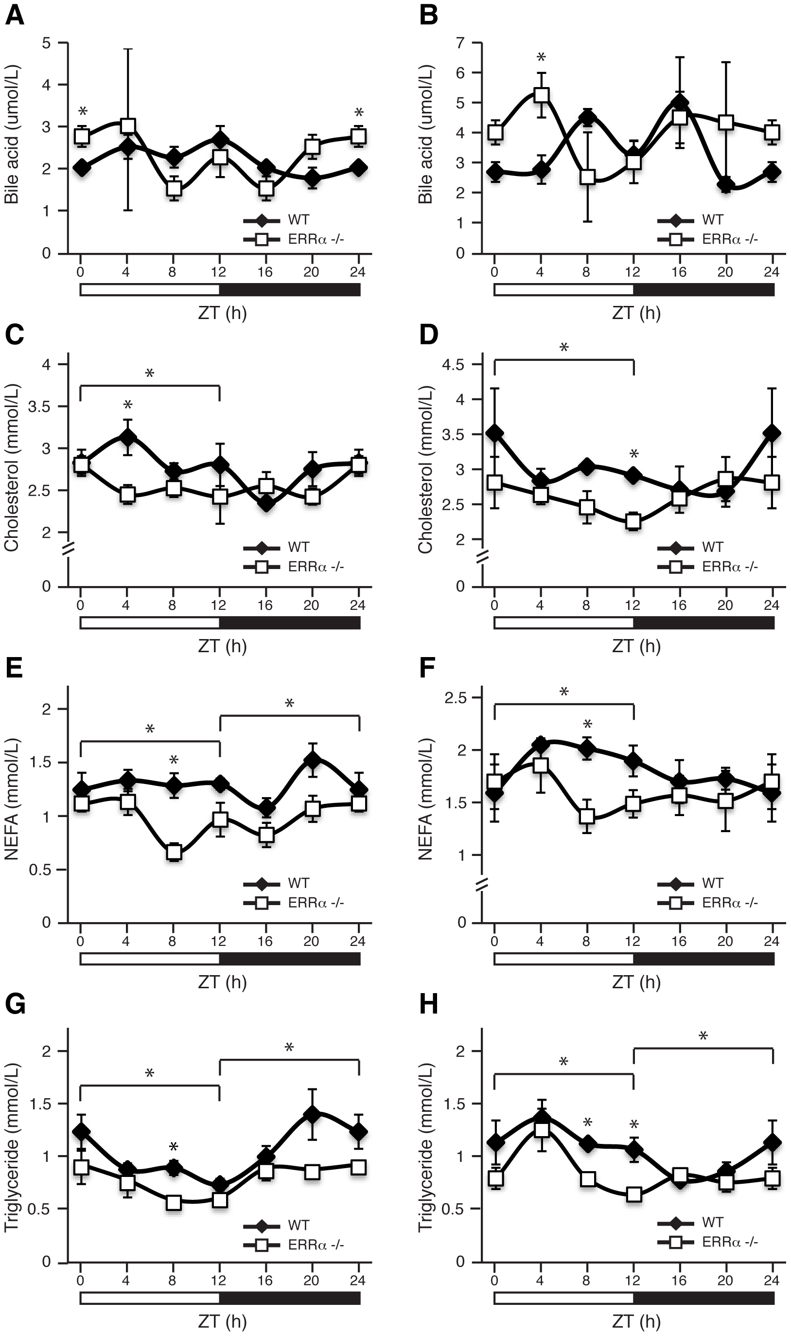 Diurnal variation of serum bile acid, cholesterol, NEFA, and triglyceride levels in WT and ERRα-null mice.