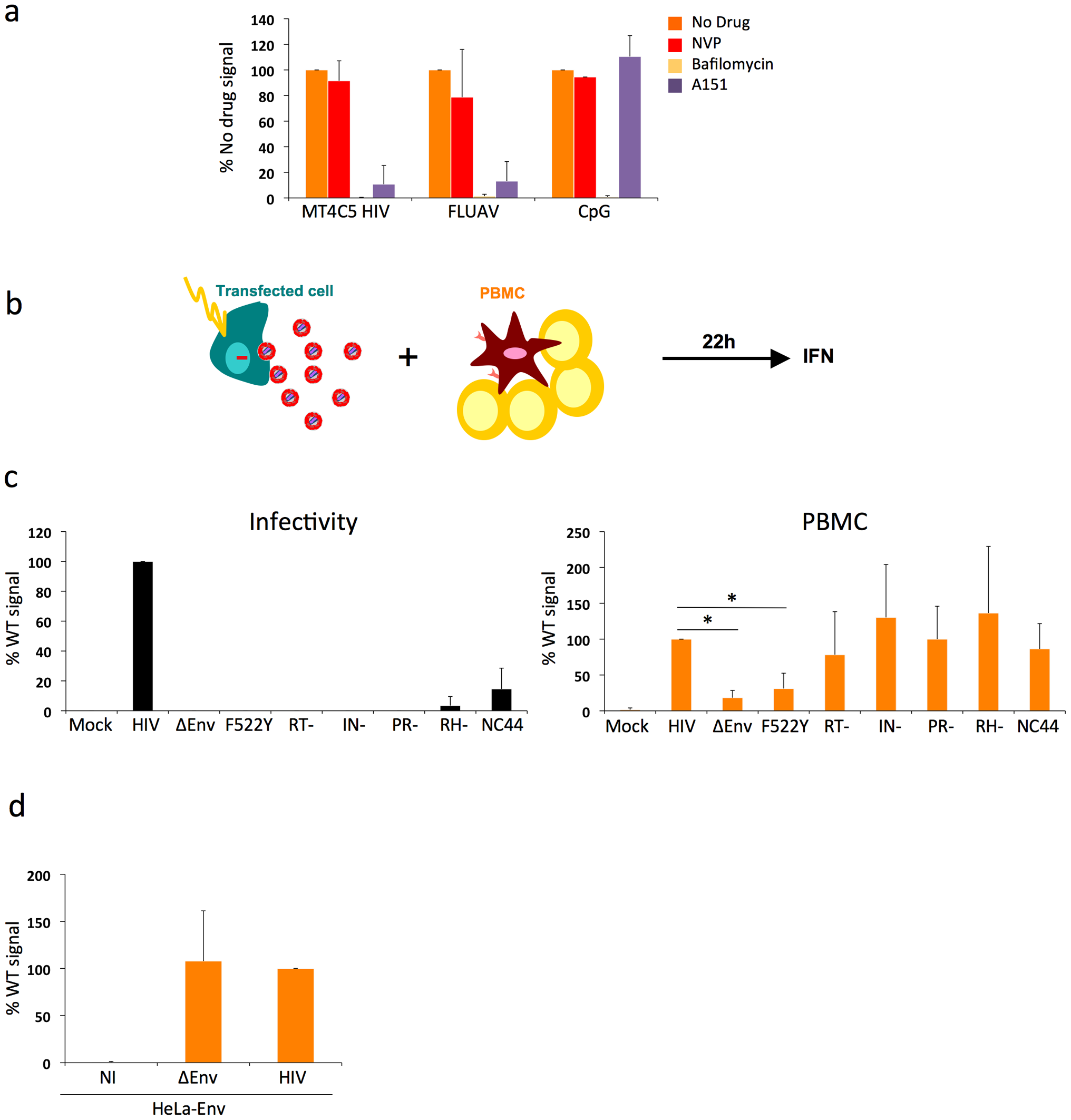 Pathways of recognition of HIV-infected cells by hematopoïetic cells.