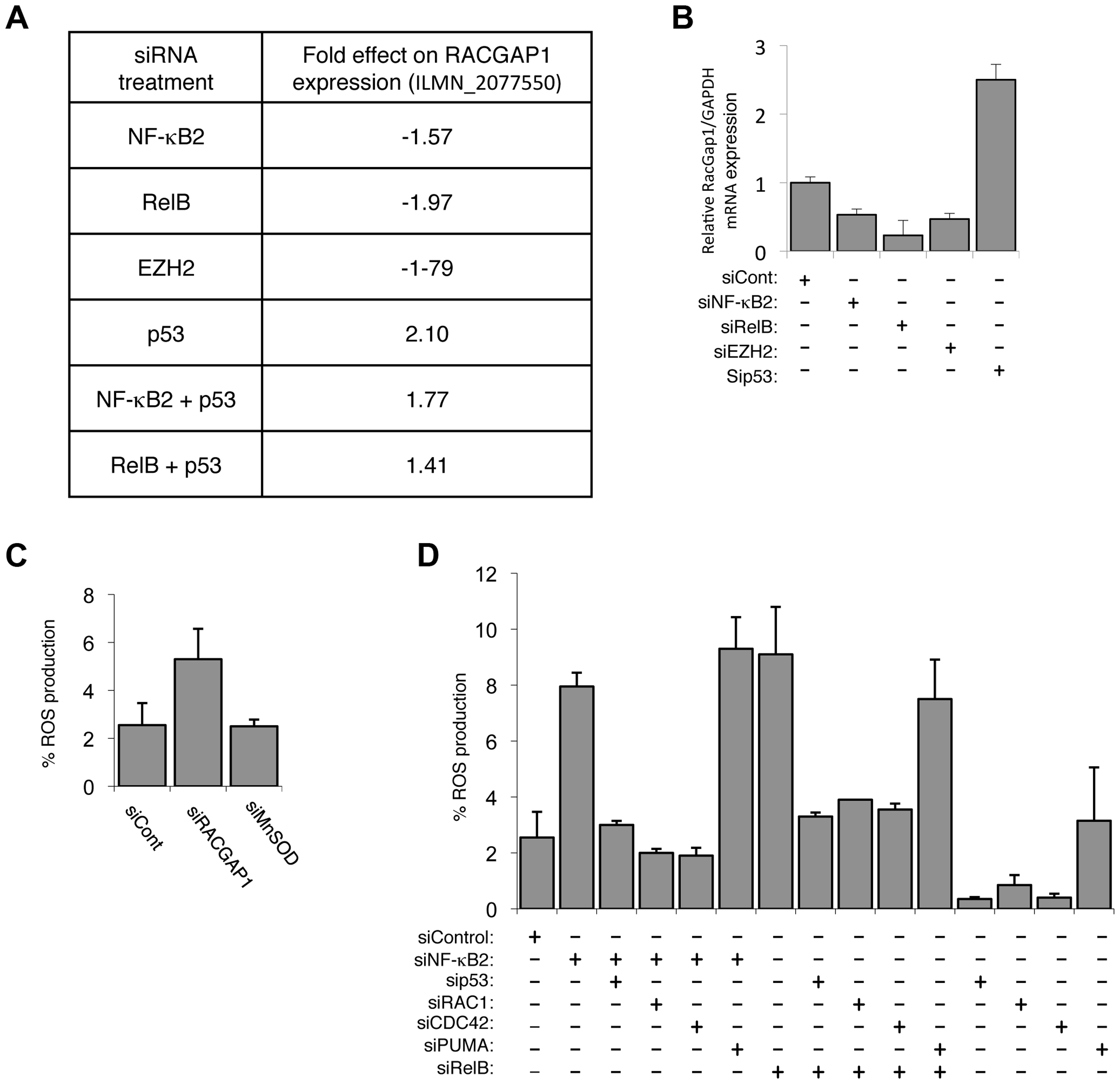 The alternative NF-κB pathway suppresses ROS production through the regulation of RacGAP.