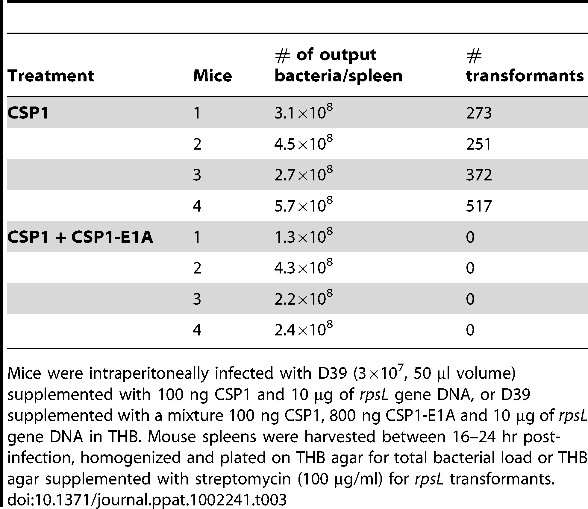 CSPP1-E1A inhibits the ability of <i>S. pneumoniae</i> to acquire the <i>rpsL</i> streptomycin resistance gene in mouse peritoneal cavity.
